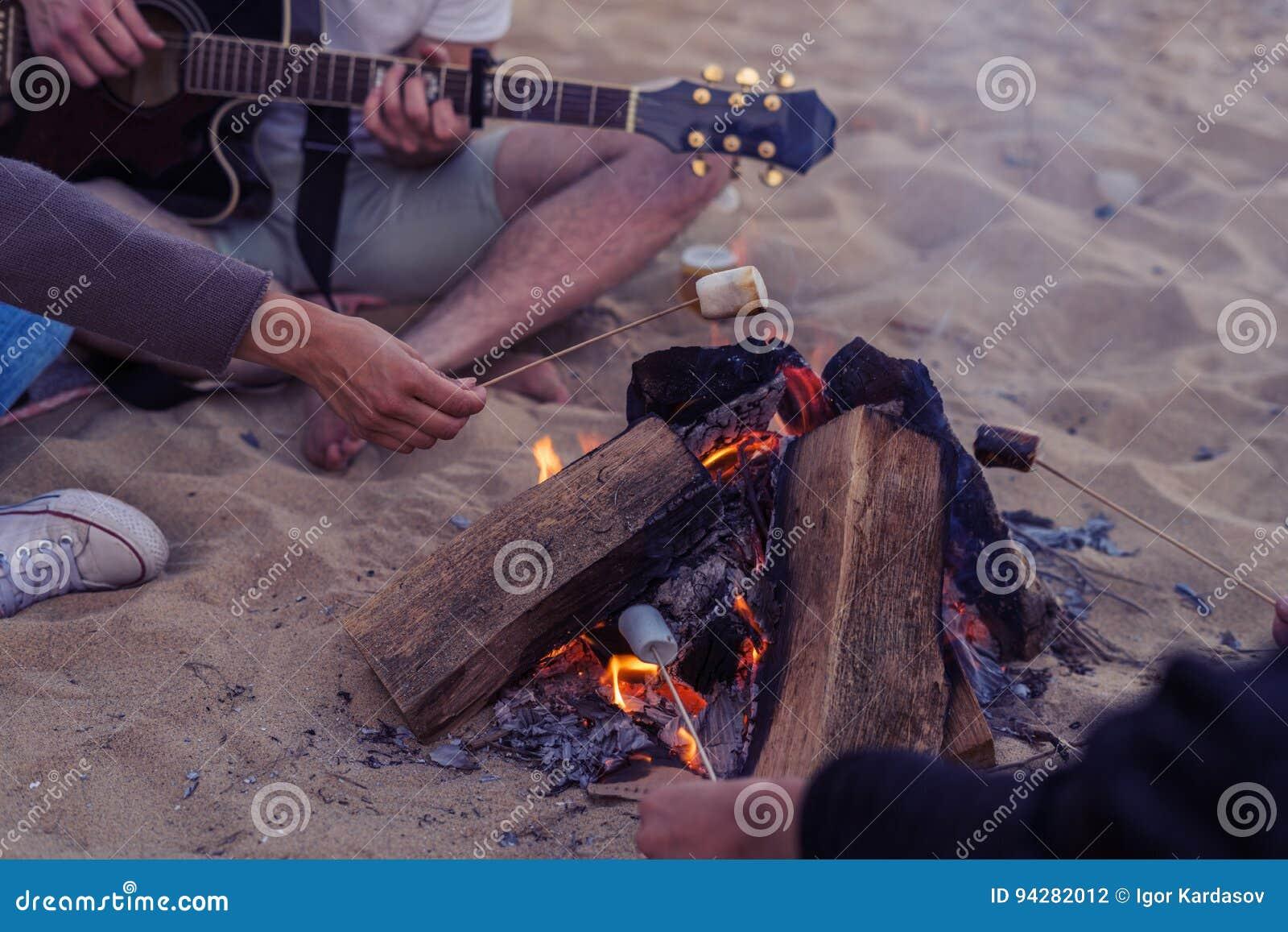 Vänner som sitter på stenar på stranden Mannen spelar gitarren