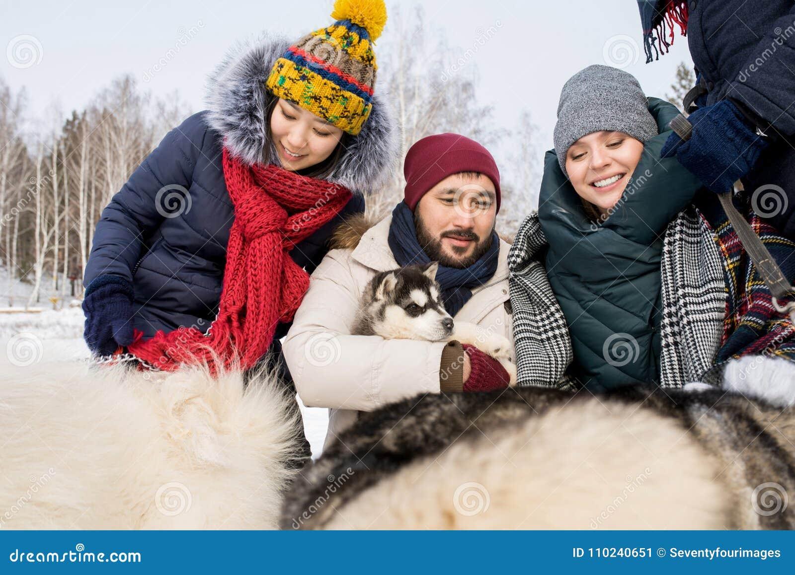 Vänner som spelar med Husky Dogs