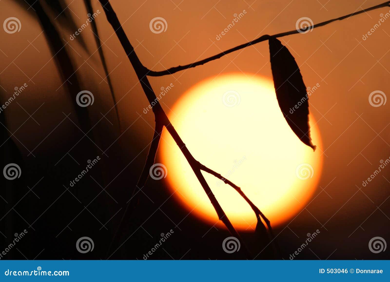 Download Värmevärme för global risk arkivfoto. Bild av soluppgång - 503046
