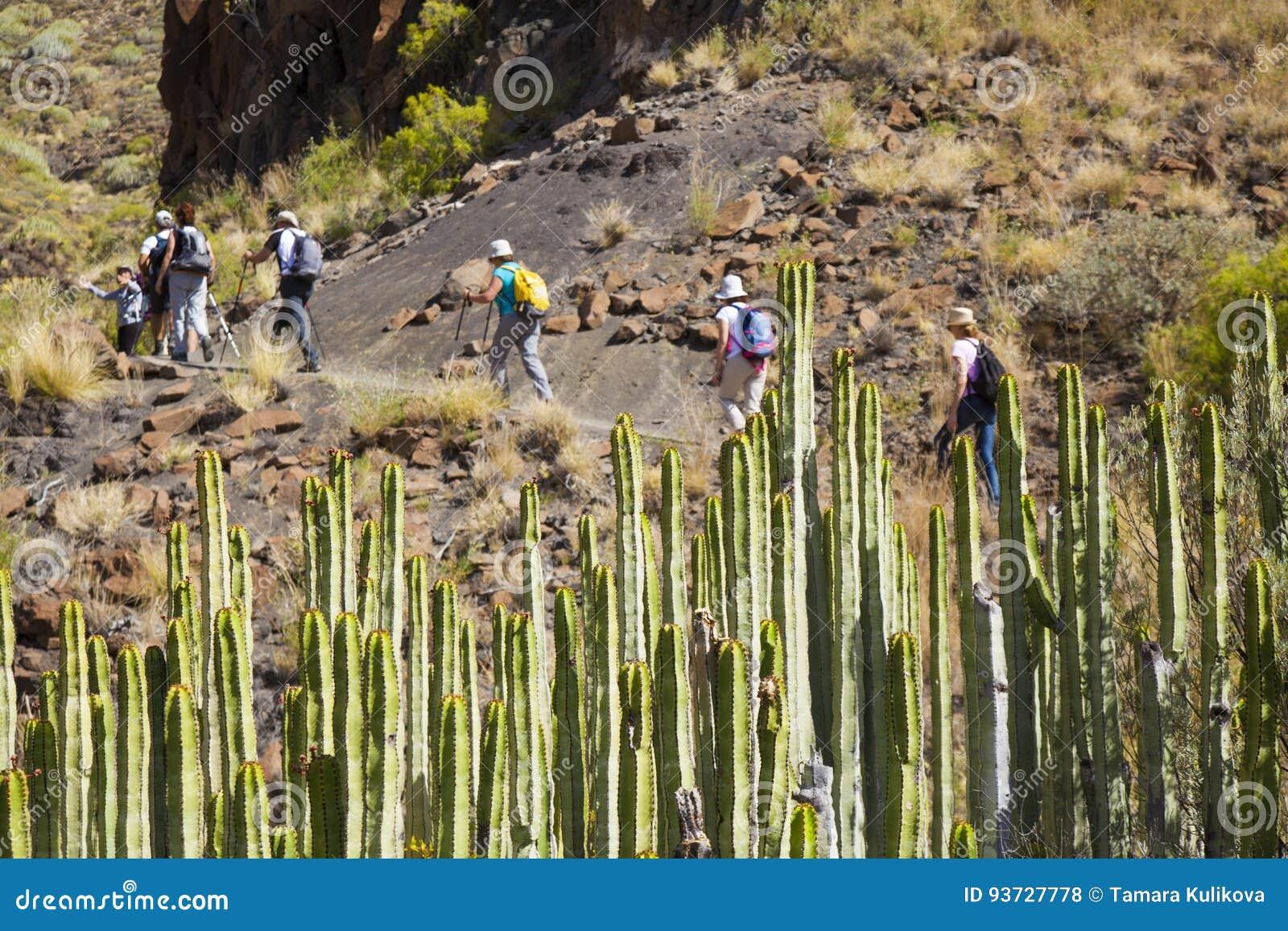 Västra Gran Canaria, Maj