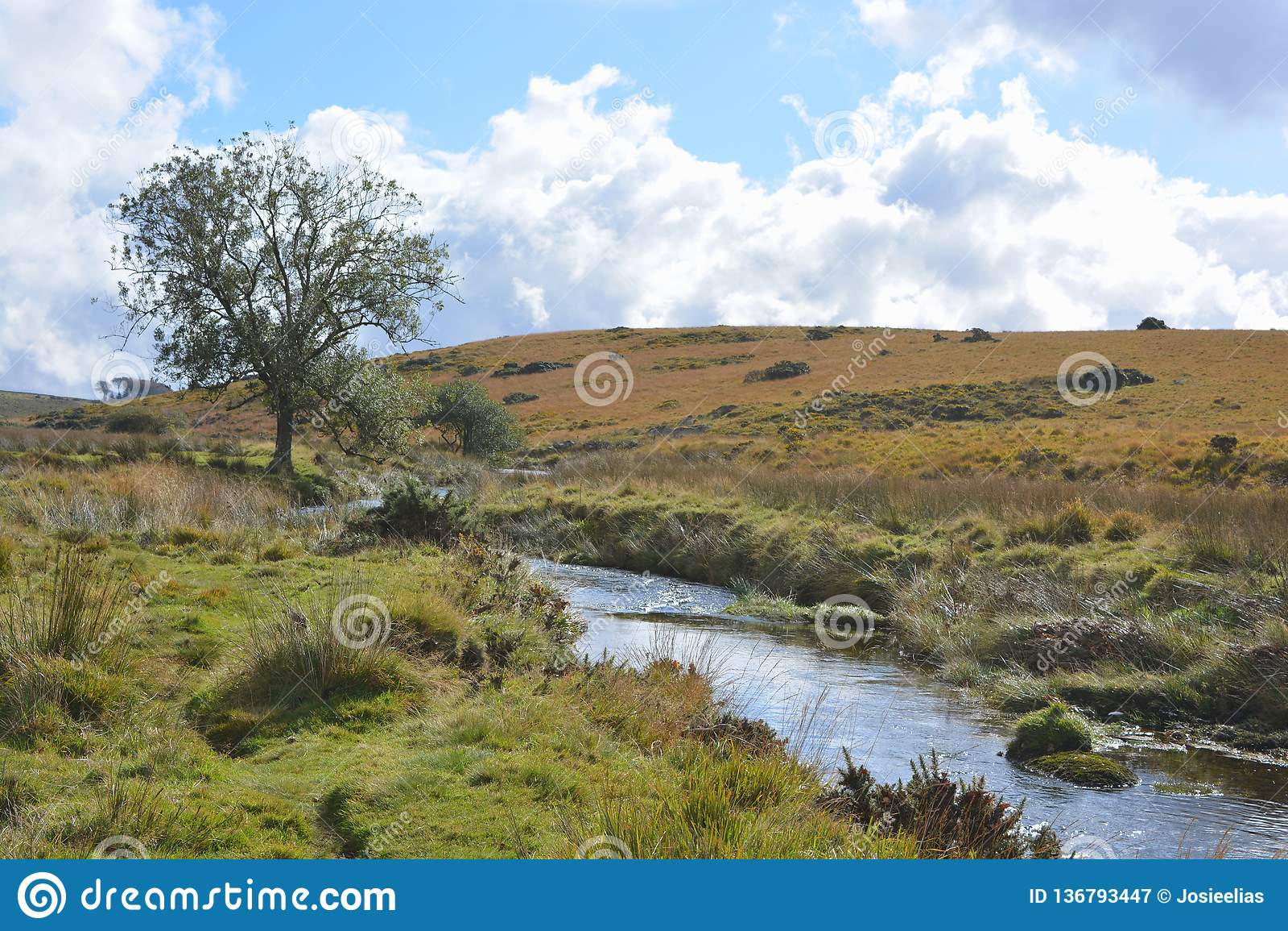 Västra pilflod nära två broar, Dartmoor nationalpark, Devon, England