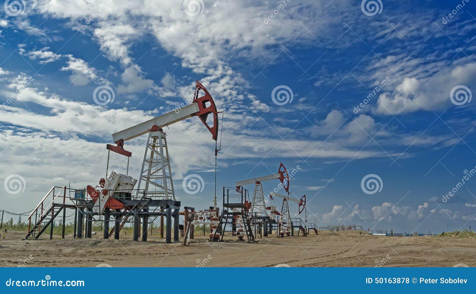 Västra Siberia Ryssland Olje- pumpar som pumpar utrustning