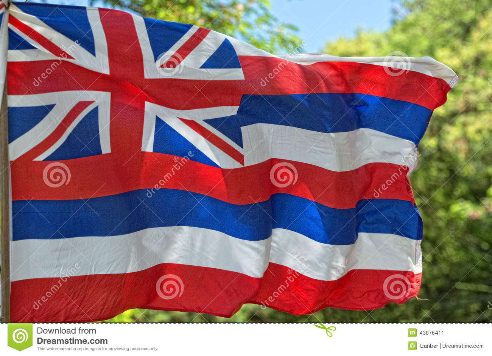 Väva för Hawaii flagga
