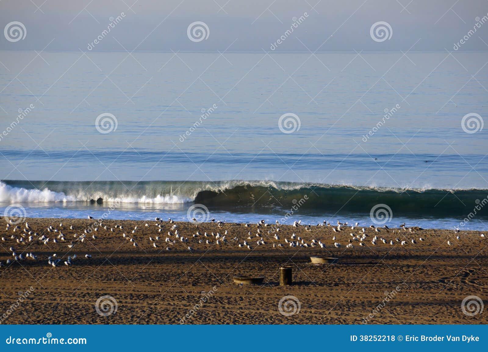 Vågen bryter på kust av stranden i LA