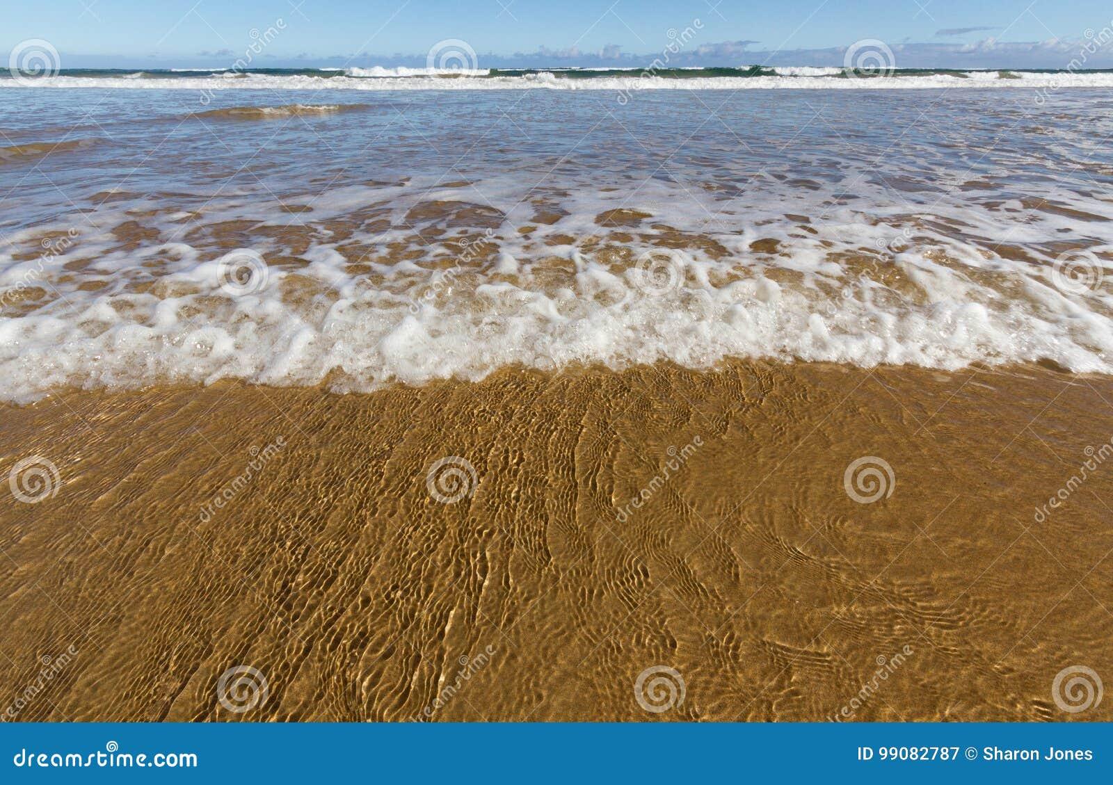 Vågen sveper en guld- sandstrand