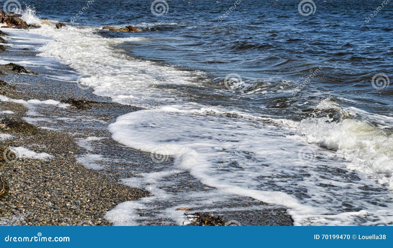 Vågor som sköljas upp på stranden i den Penobscot fjärden, Maine