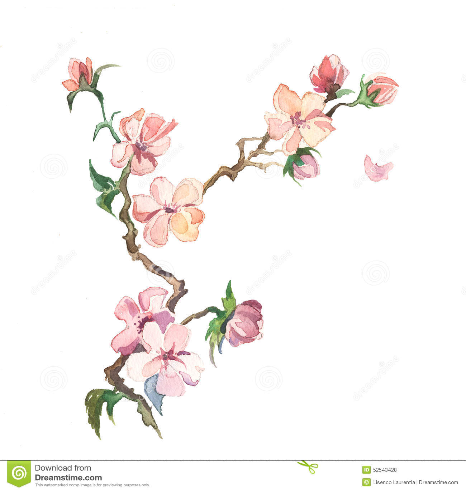 Våren blommar målningvattenfärgen