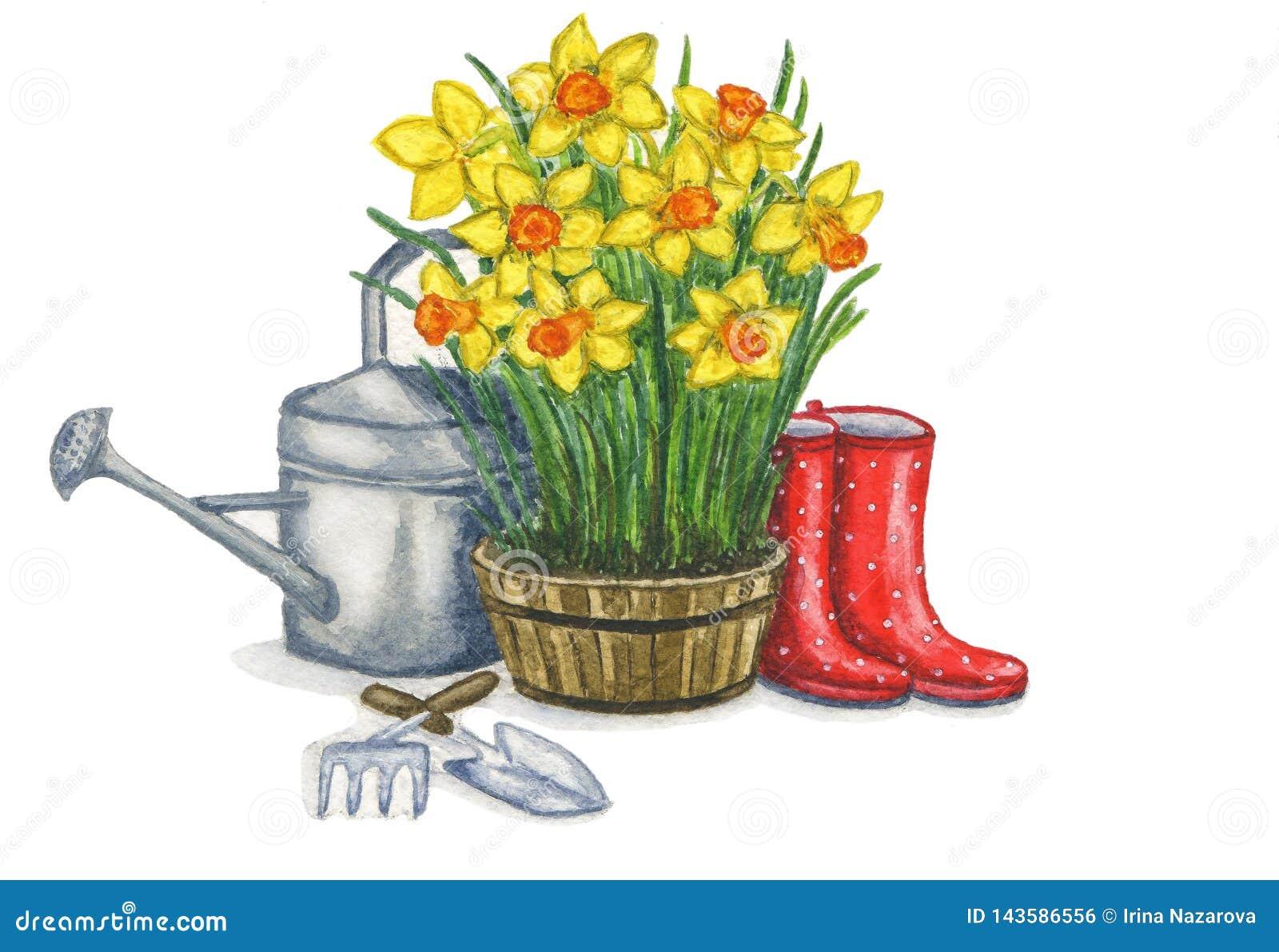 Vårsammansättning som illustrerar de arbeta i trädgården arbetena