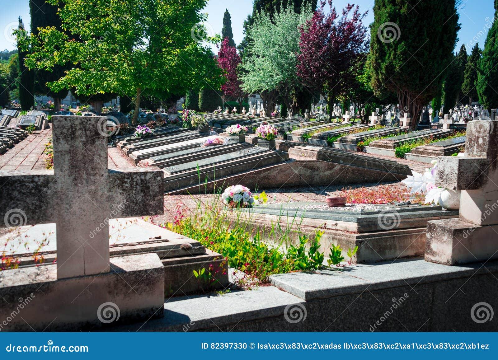 Vårtid i kyrkogårdSten Jose Burgos