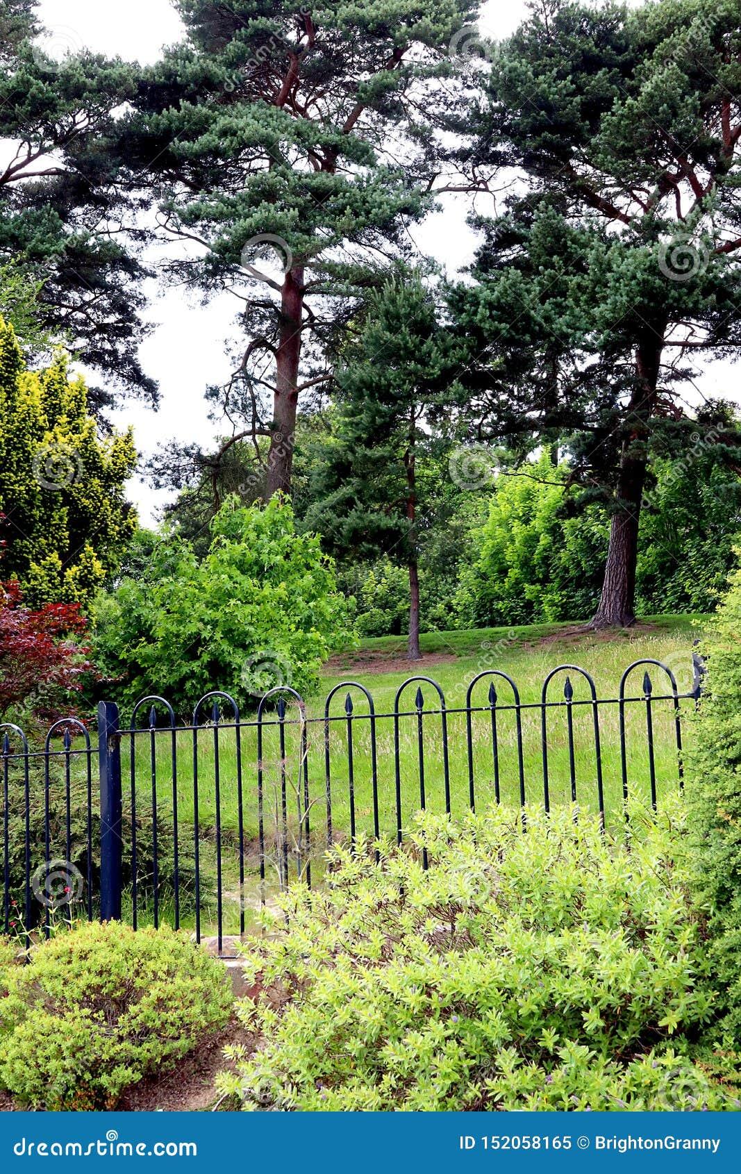 Végétation clôturée de parc