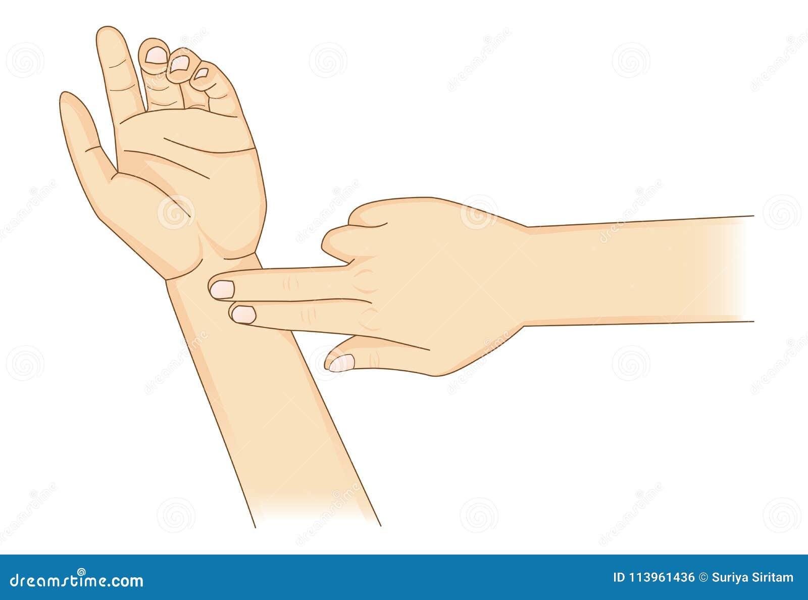 Vérification de votre coeur Rate Manually avec des doigts de l endroit deux au poignet