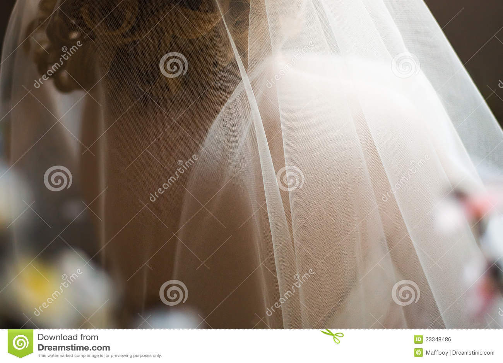 Véu nupcial Wedding