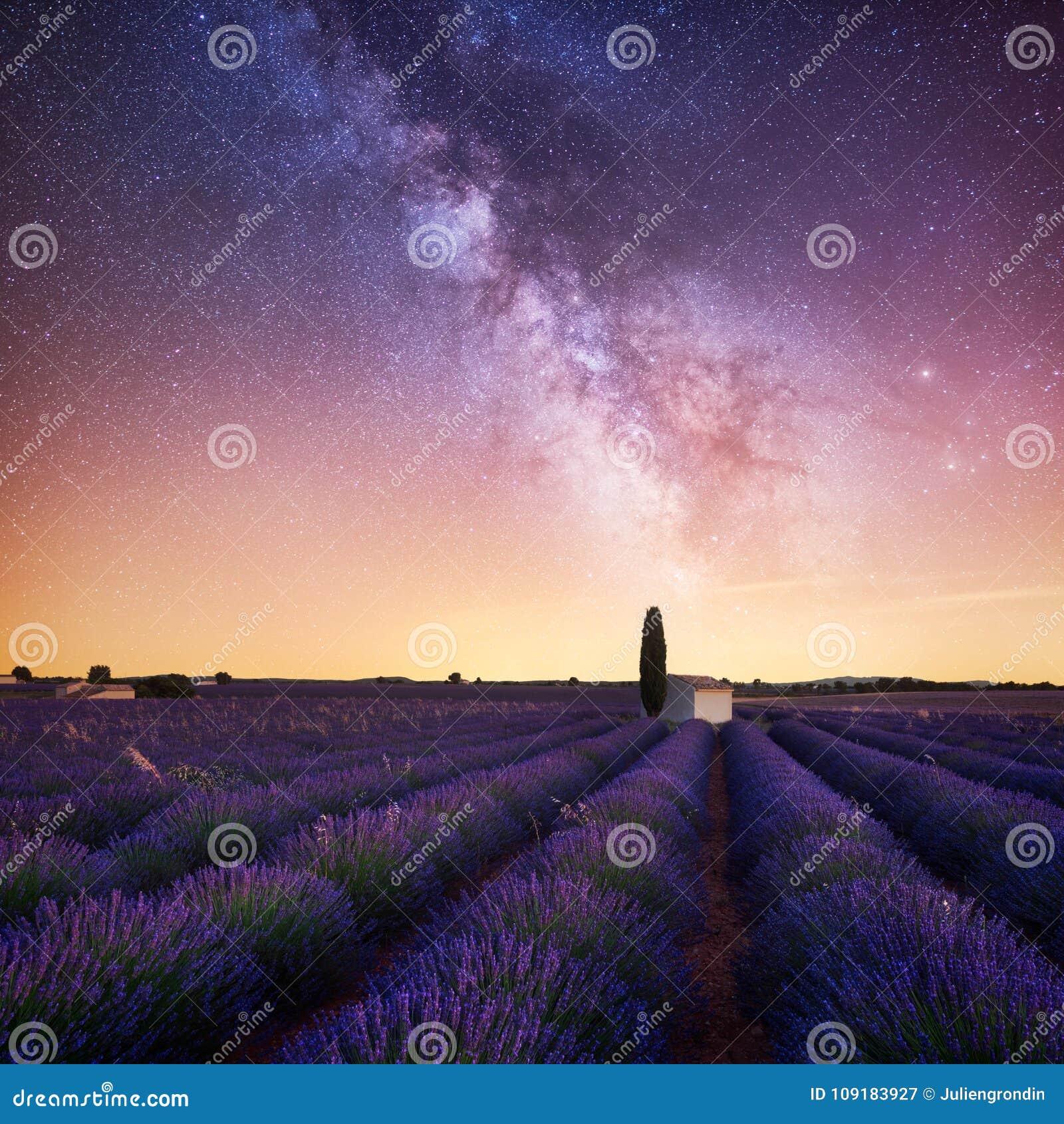 Vía láctea sobre campo de la lavanda en Provence Francia