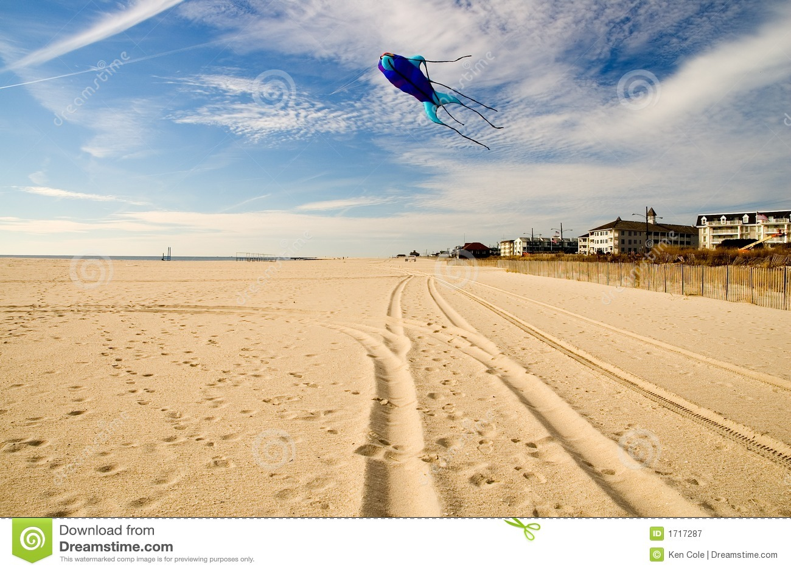 Vôo do papagaio no Beach-1