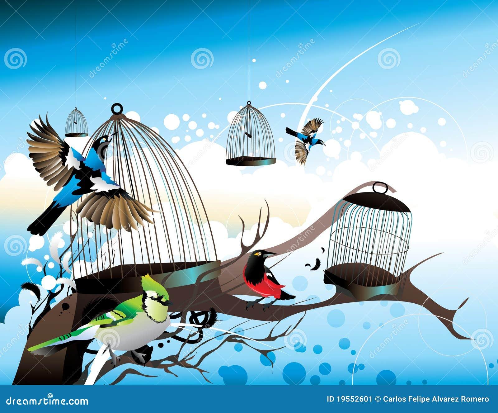 Vögel, Die Weg Von Ihren Rahmen Fliegen Vektor Abbildung ...