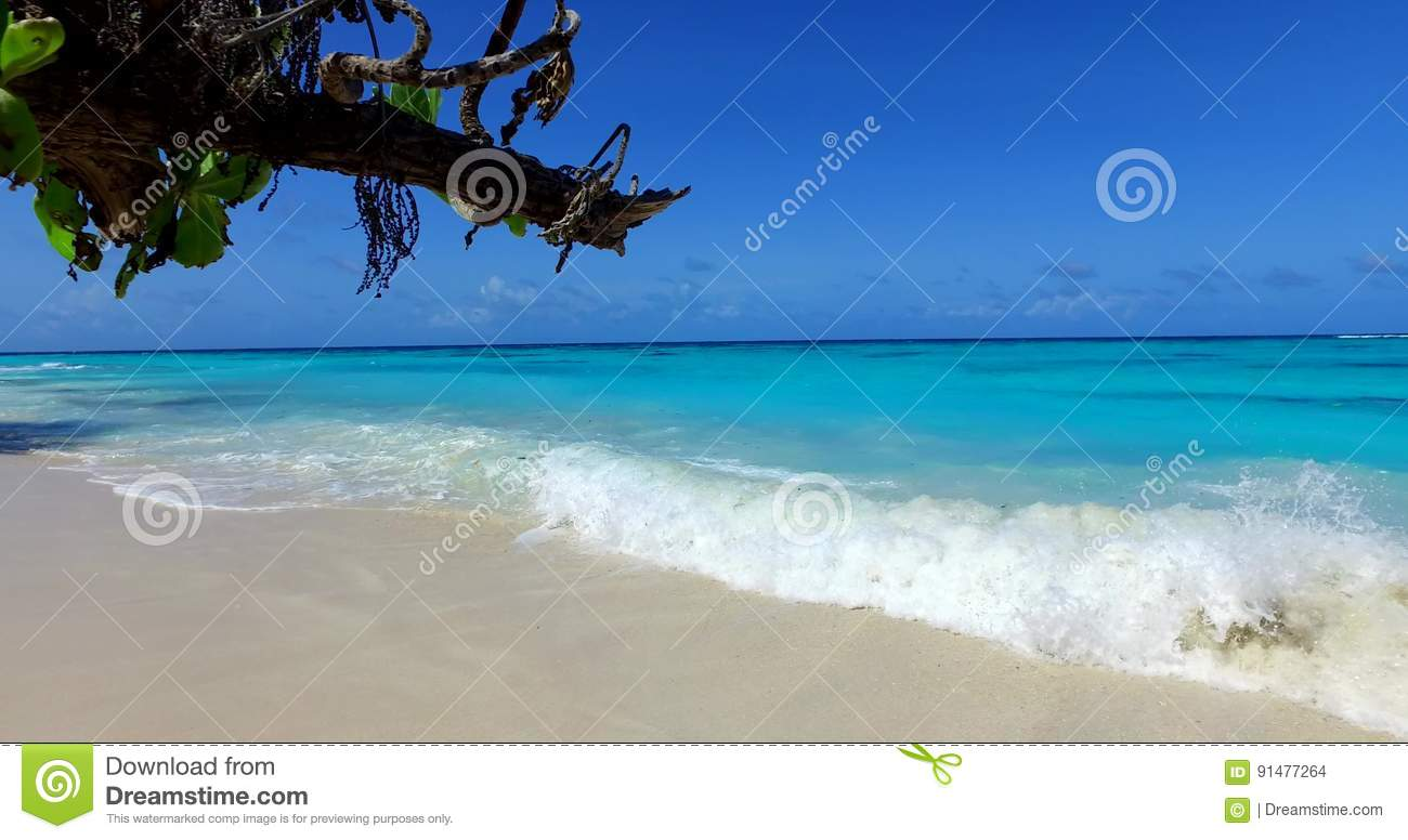 v00802 maldives beautiful beach background white sandy tropical