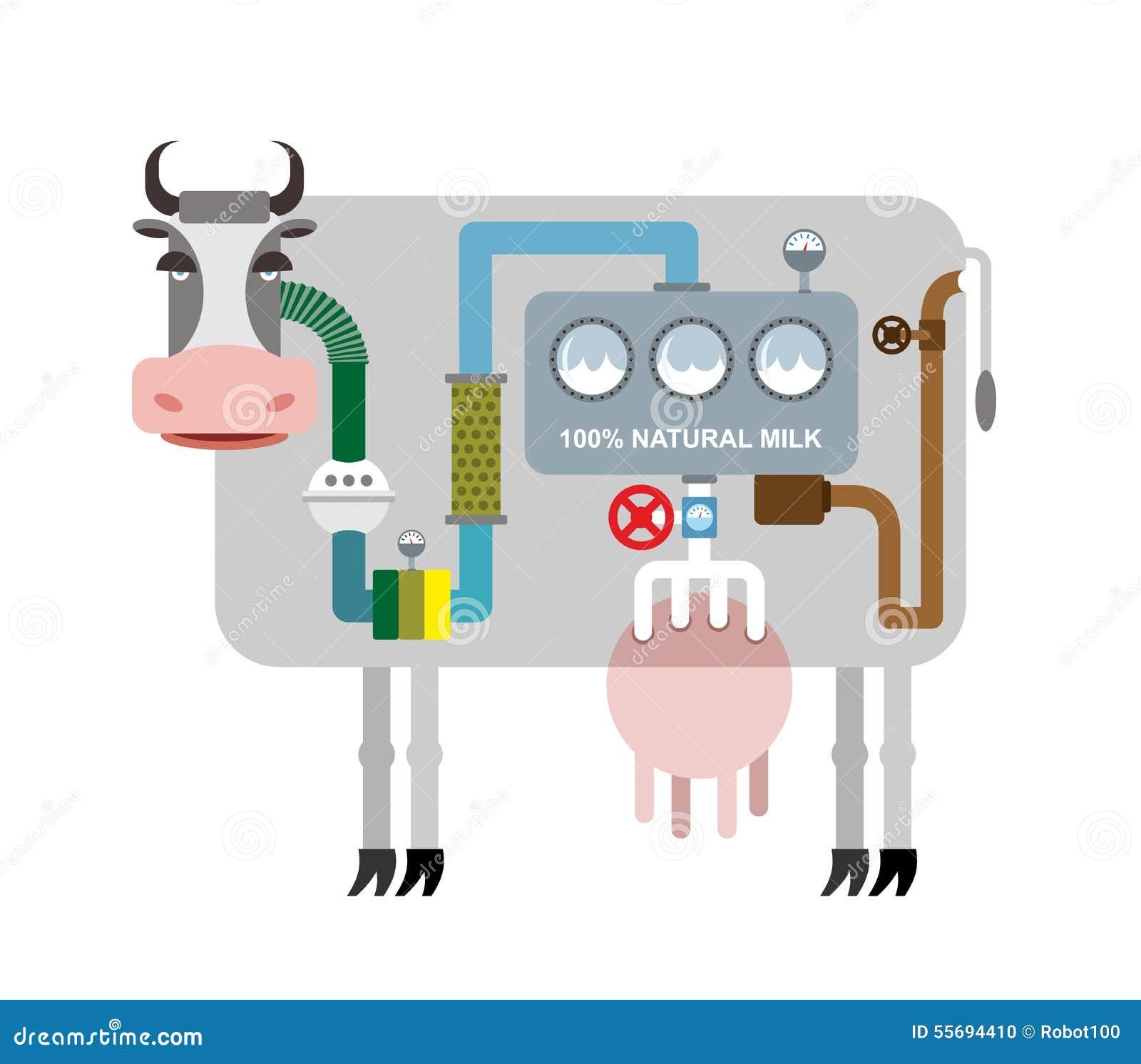 Sistema Digestivo De La Vaca Stock de ilustración - Ilustración de ...