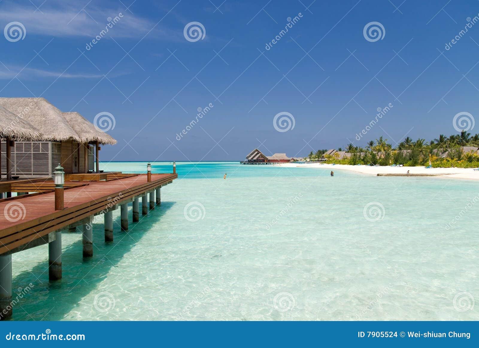 Vacaciones perfectas en Maldives.