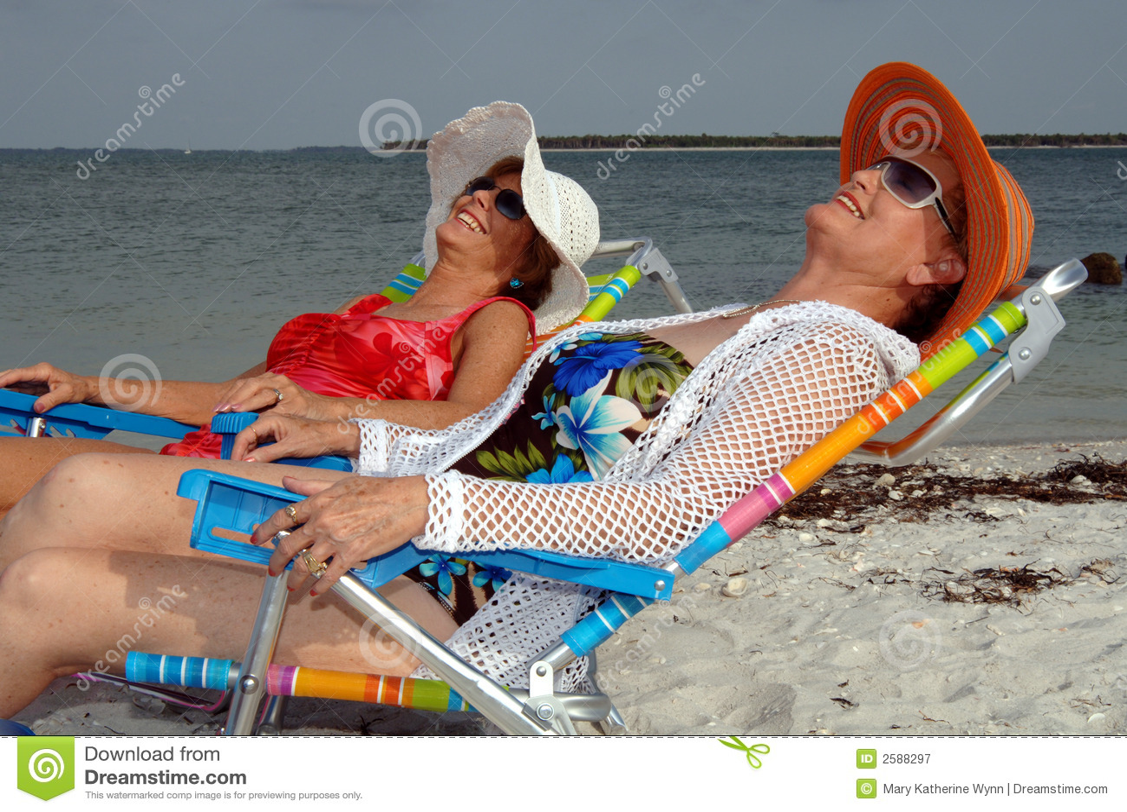 Vacanza maggiore della spiaggia degli amici