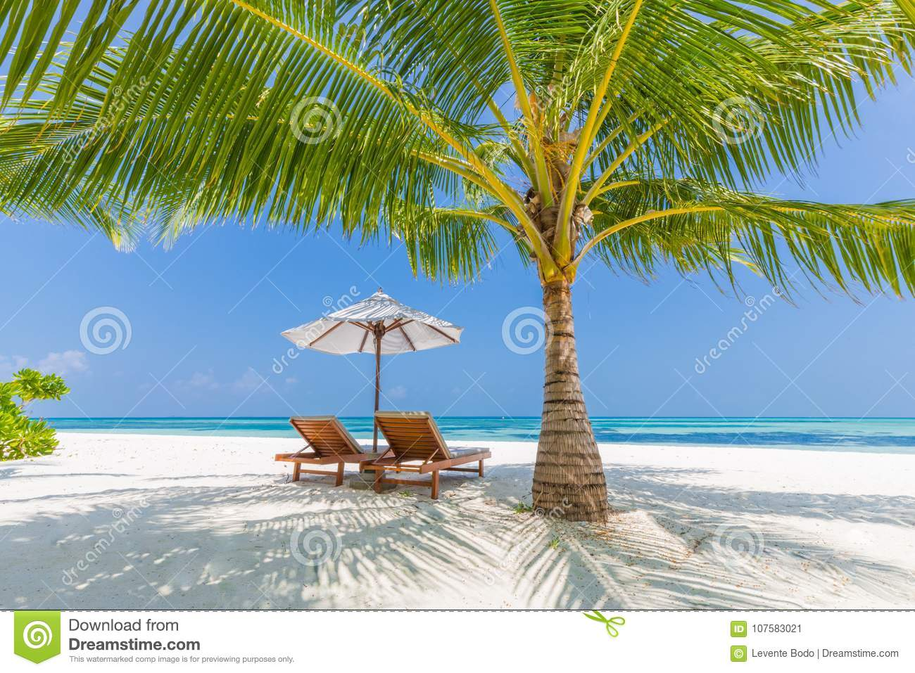 46 844 Beach Chairs Photos Free Royalty Free Stock Photos From Dreamstime