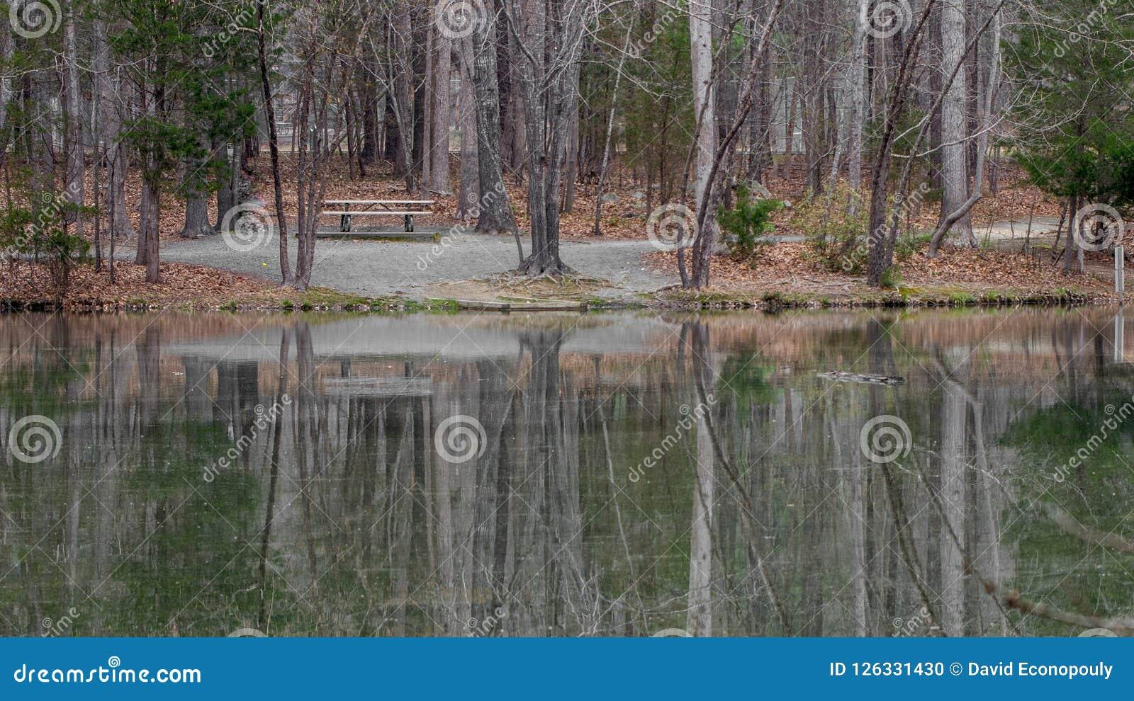 Vacie el banco de parque en el lago Foto de archivo