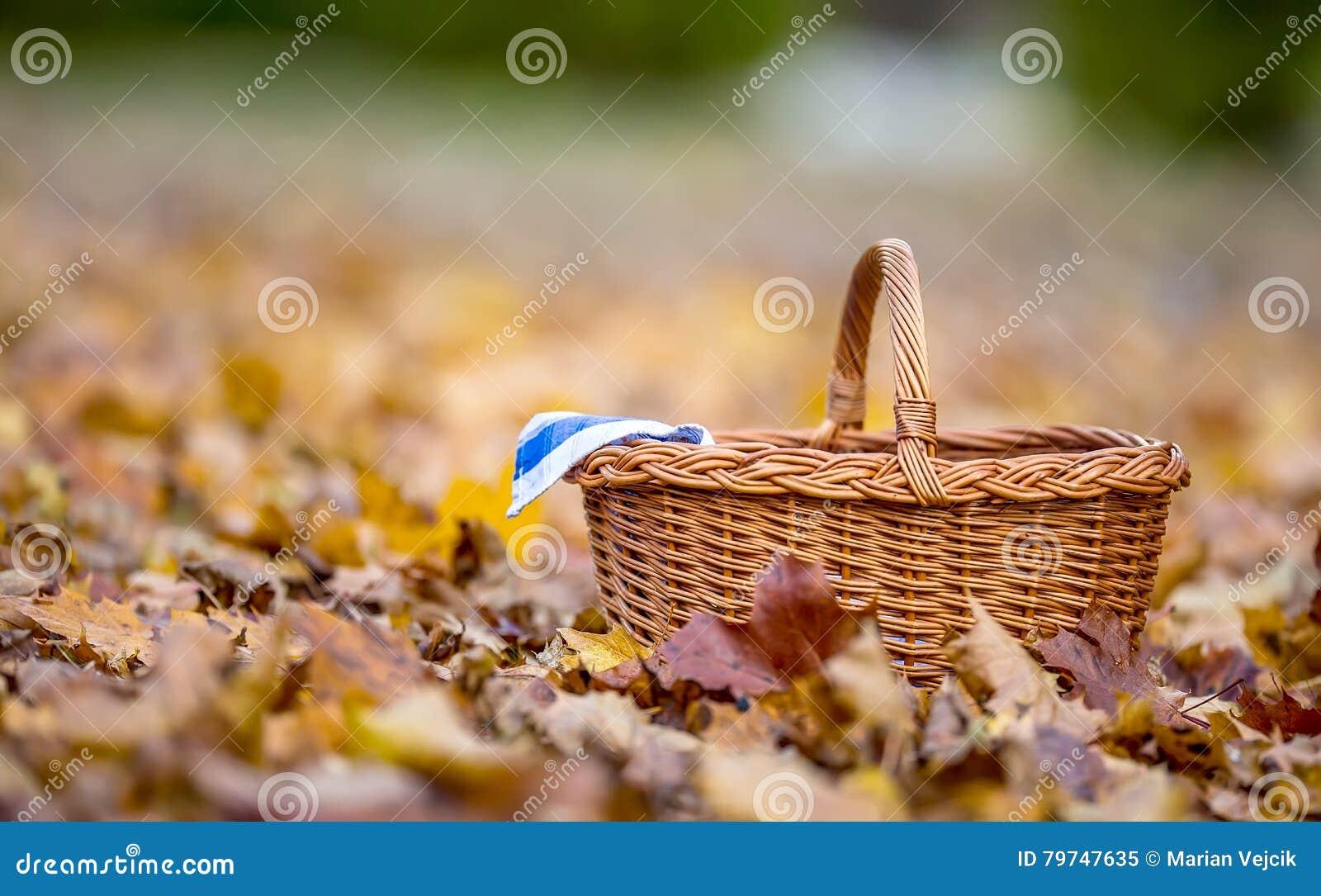 Vacie la cesta de mimbre en las hojas de otoño de oro en la cesta vacía del bosque para sus productos