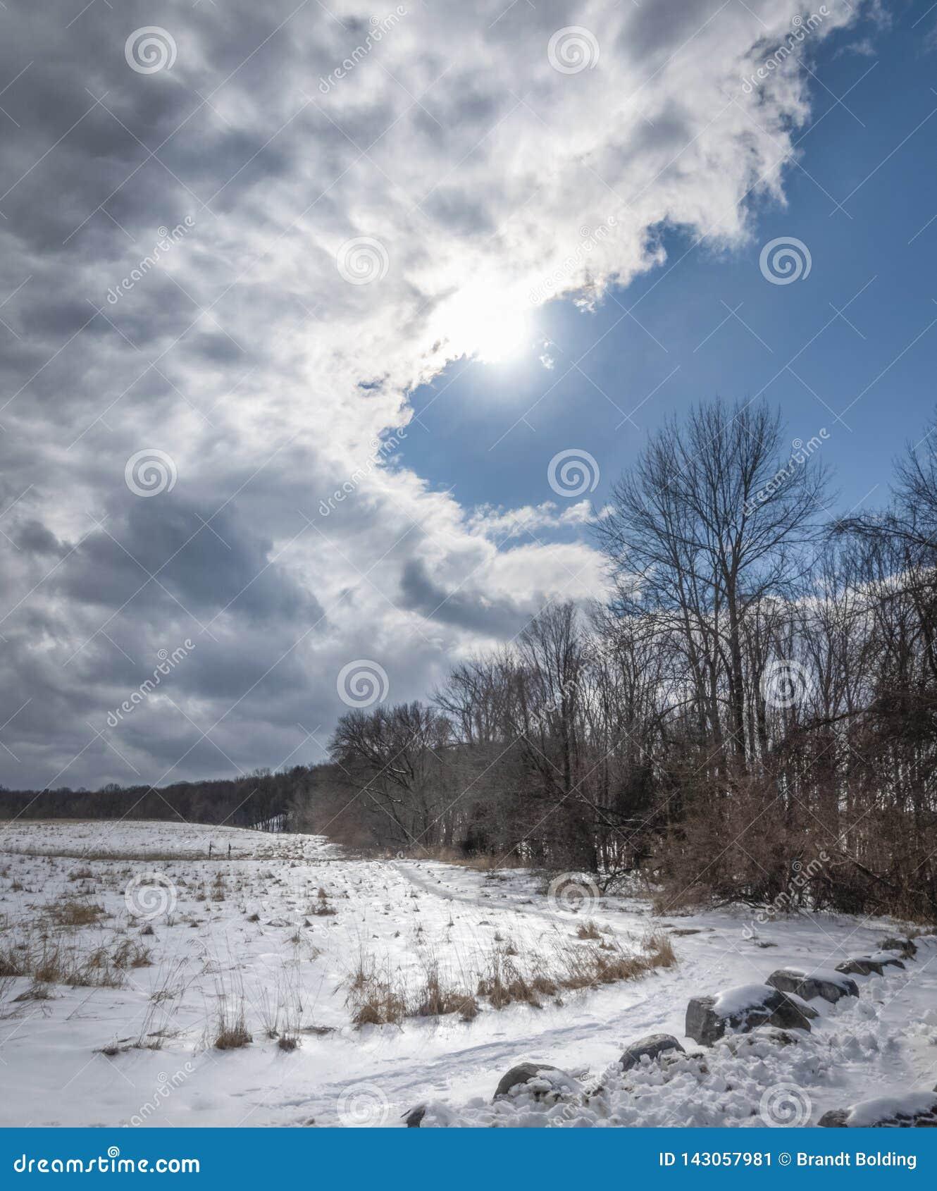 Vadderade moln över ett iskallt vinterlandskap