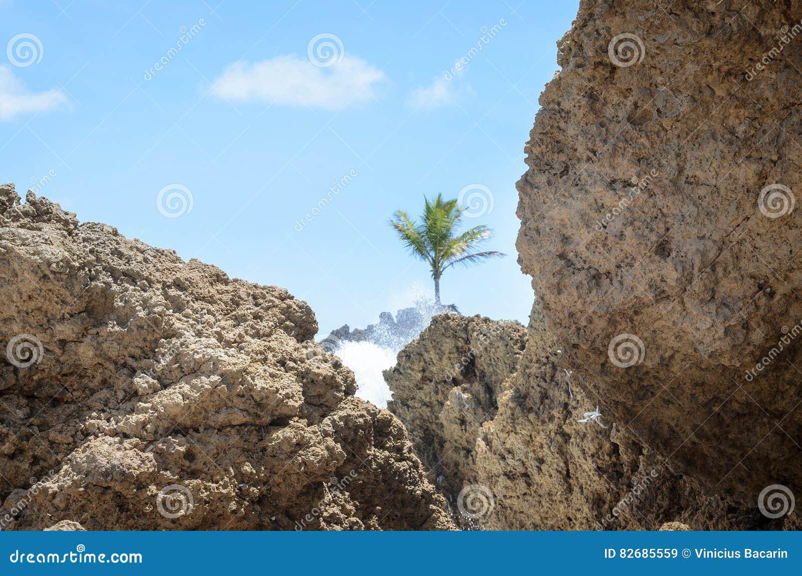 Vagga bildande som eroderas av styrkan av havsvatten Texturerat vaggar med inverkan av vågorna i den Coqueirinho stranden, Joao P
