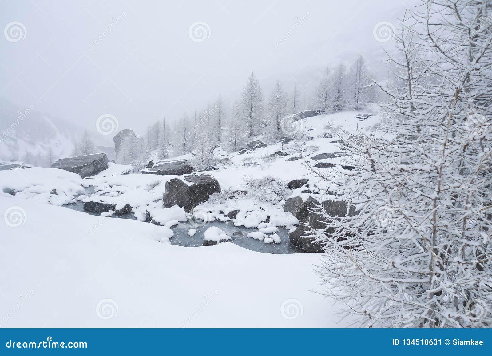 Vaggar det alpina landskapet för vintern med en bergström som över bubblar