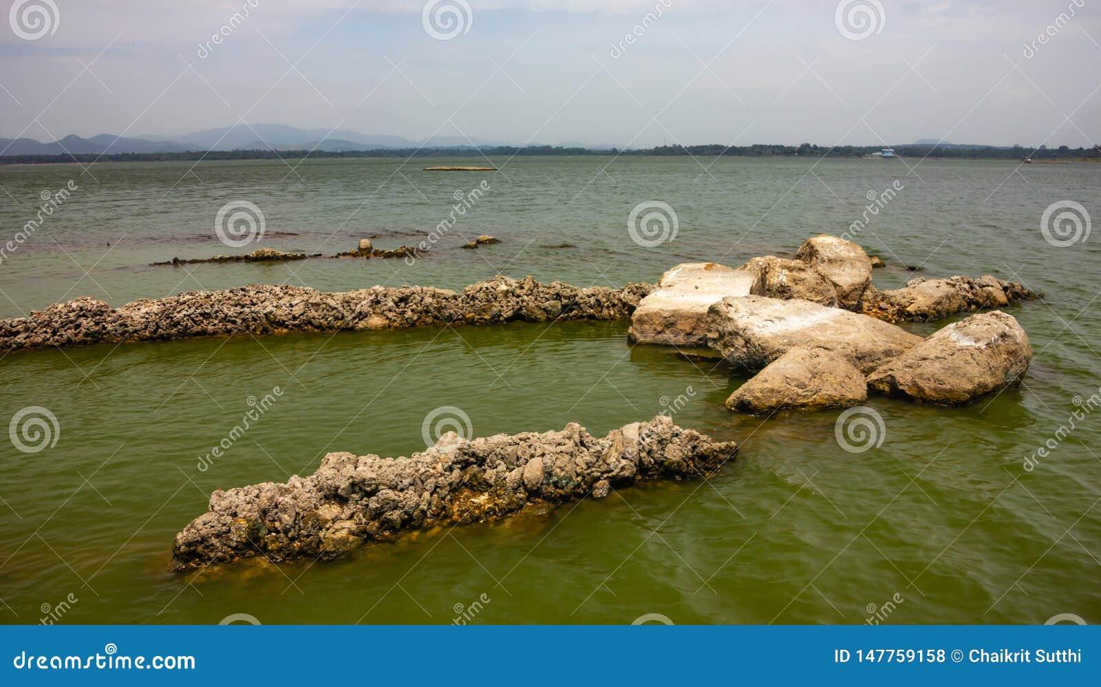 Vaggar i sjöbakgrunden som den ser härlig