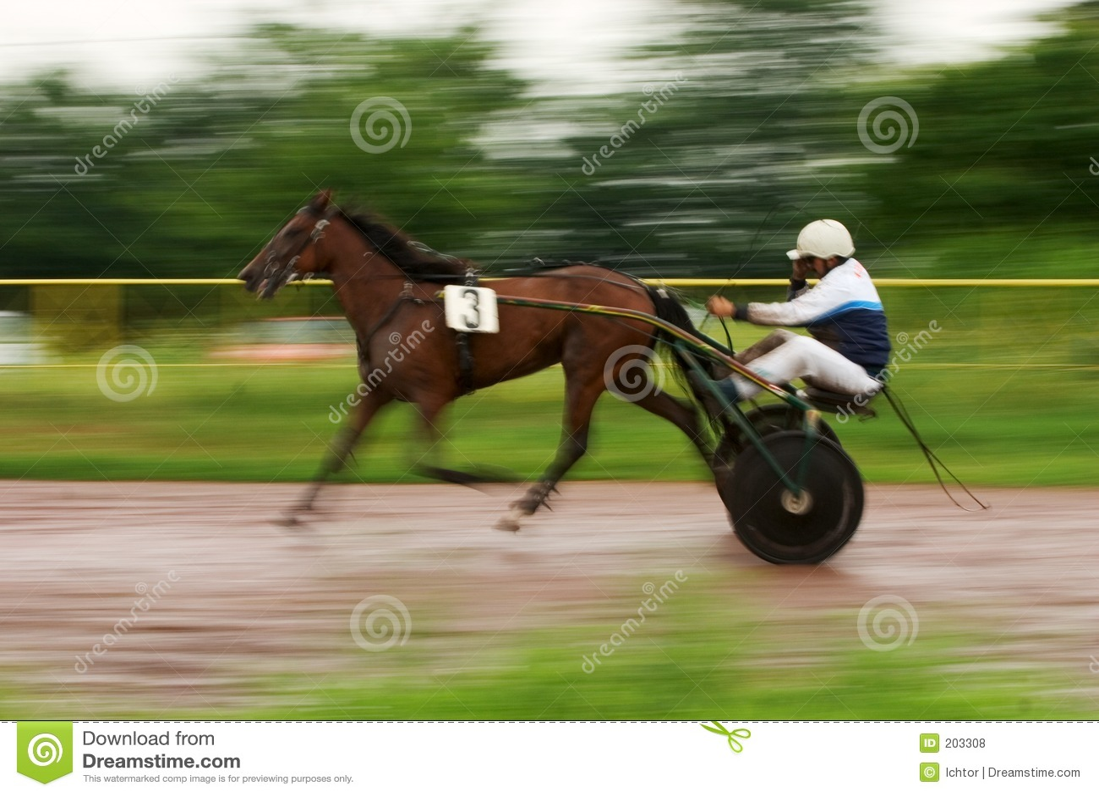 Vagnshästjockey