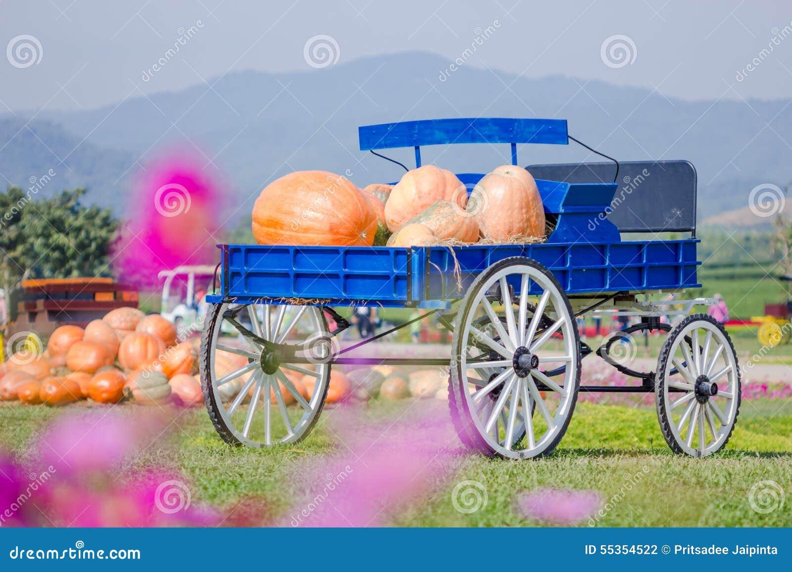 Vagone blu in pieno delle zucche