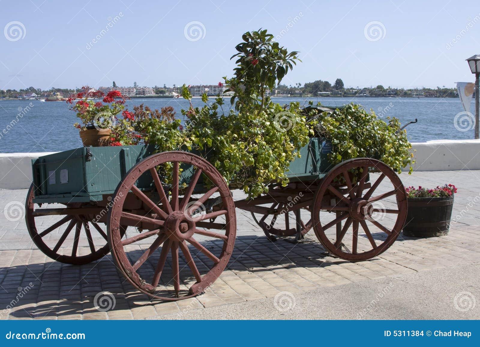 Download Vagone Del Fiore - San Diego Fotografia Stock - Immagine di diego, seaport: 5311384