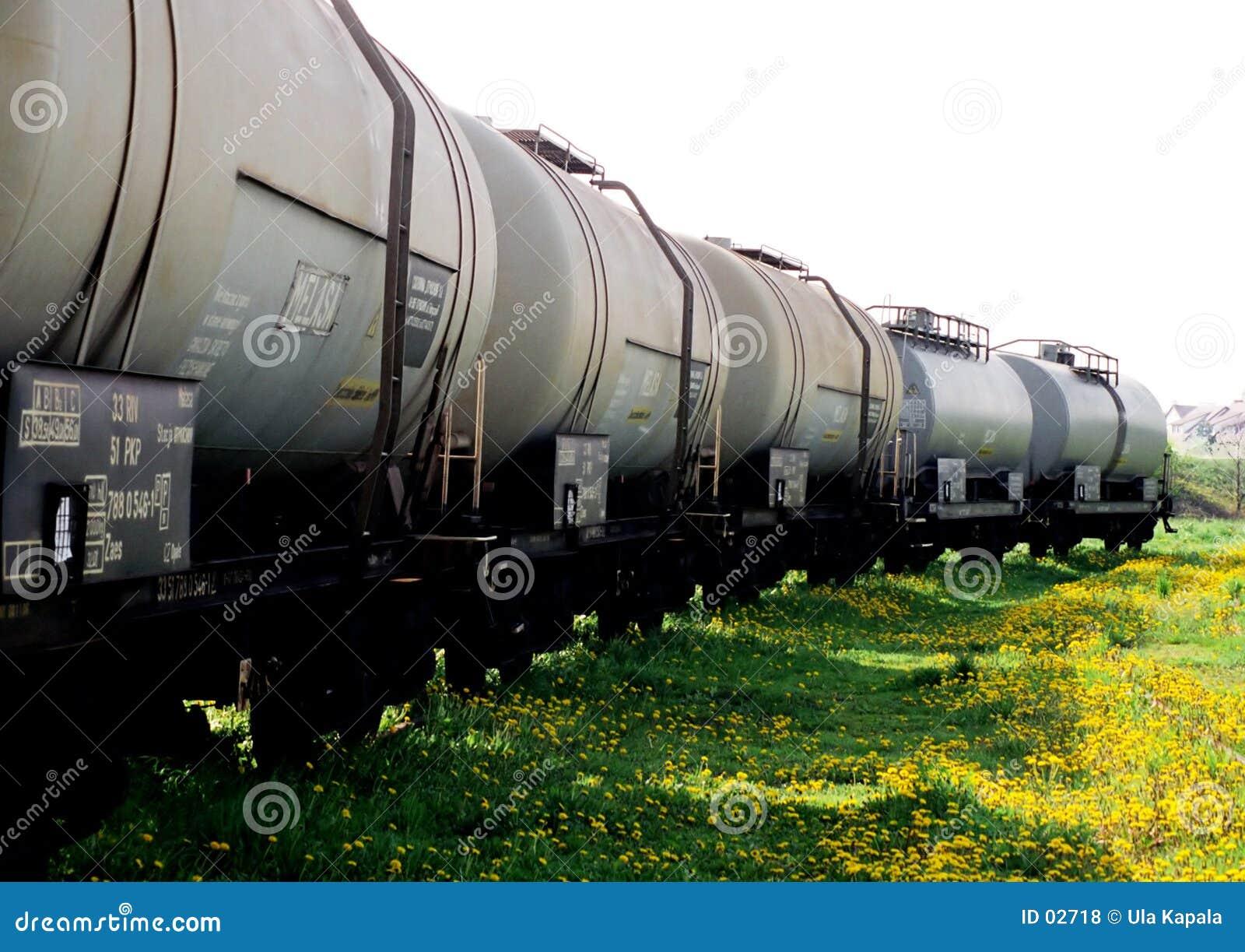 Vagoni del trasporto su un erba