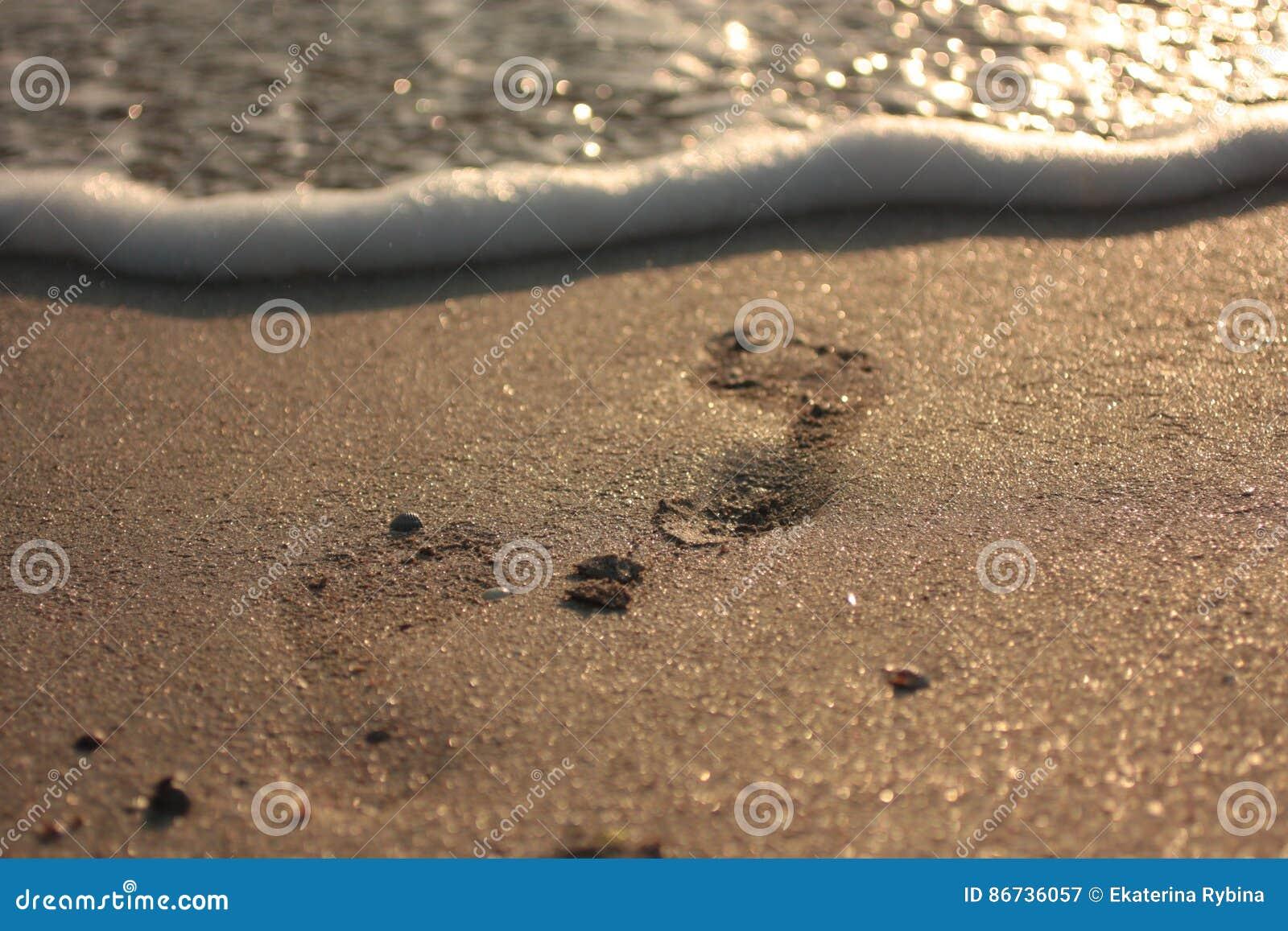 Vague molle d océan bleu sur la plage sablonneuse Fond