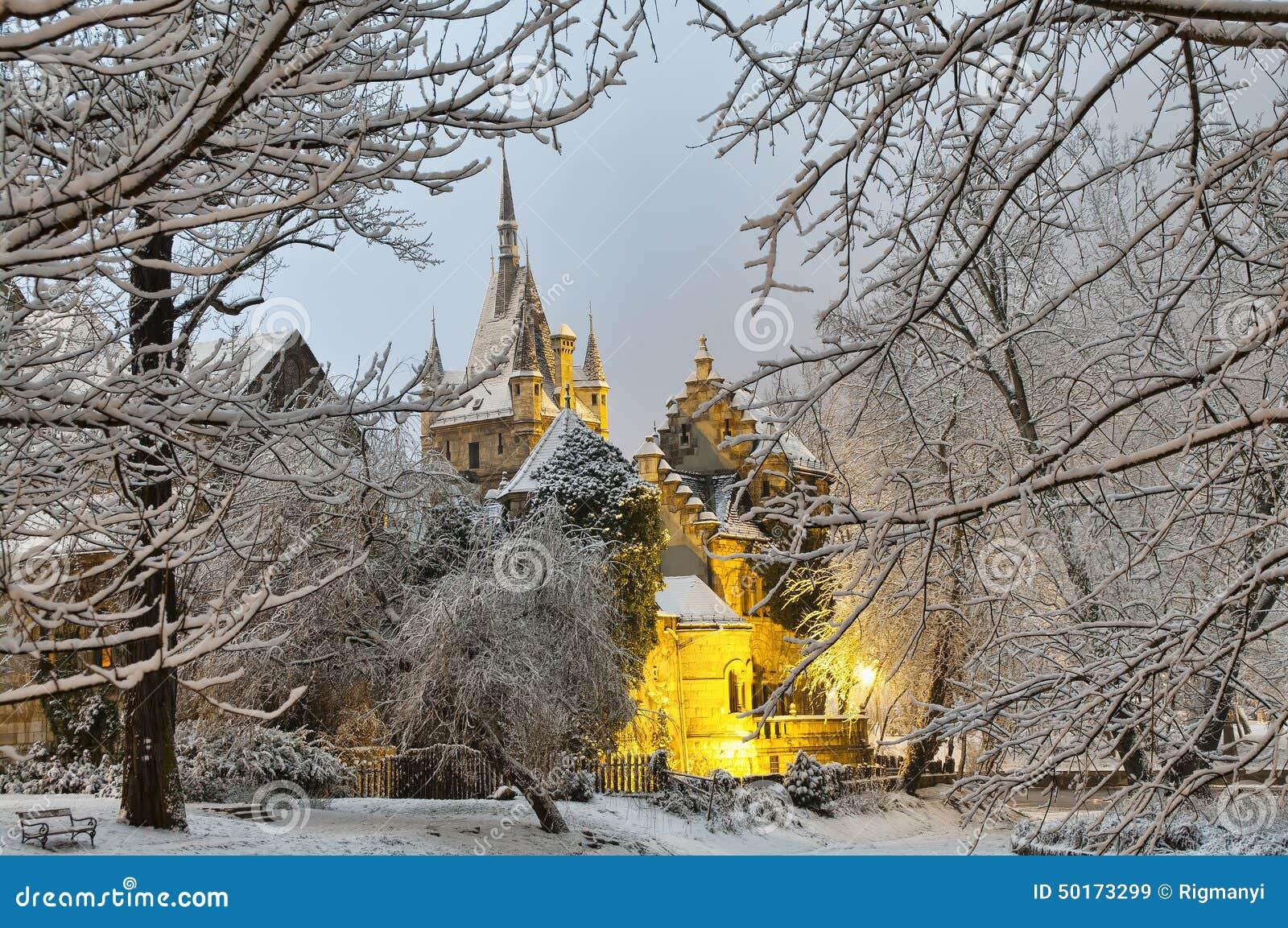 vajdahunyad castle at night stock photo   image 50173299
