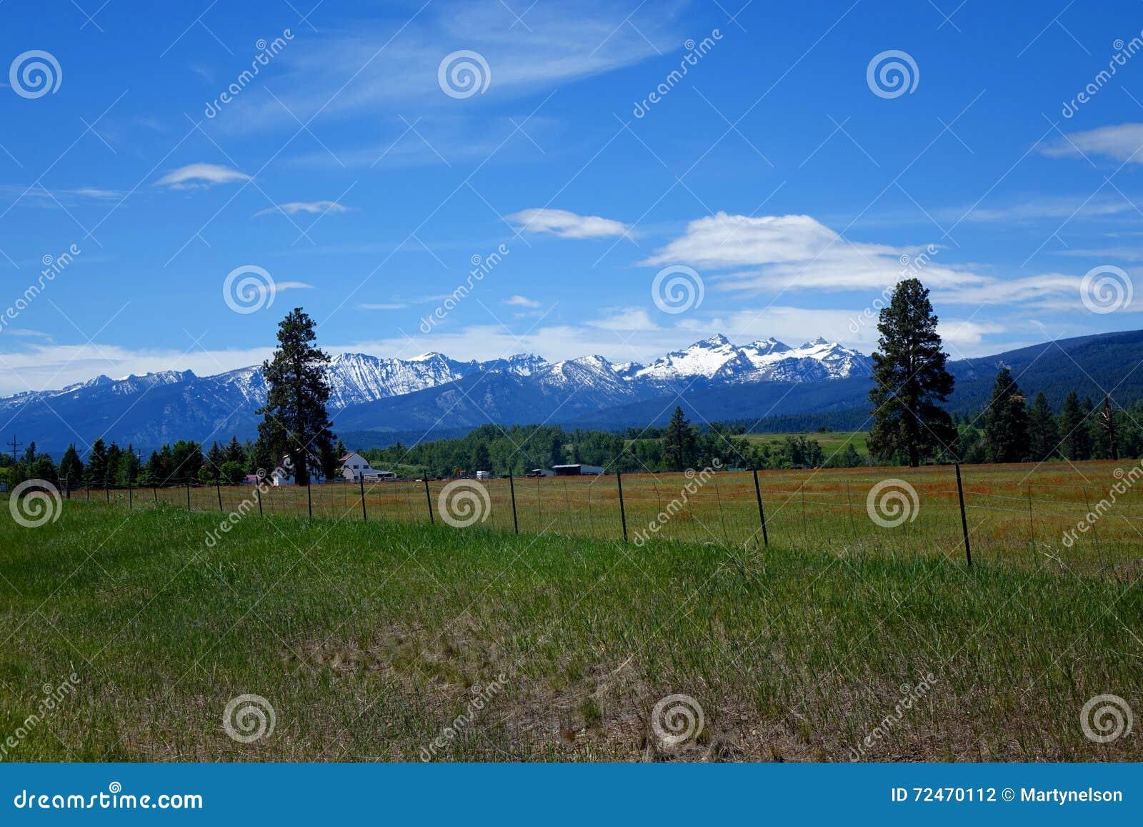 Vale da montanha do Bitterroot - Montana
