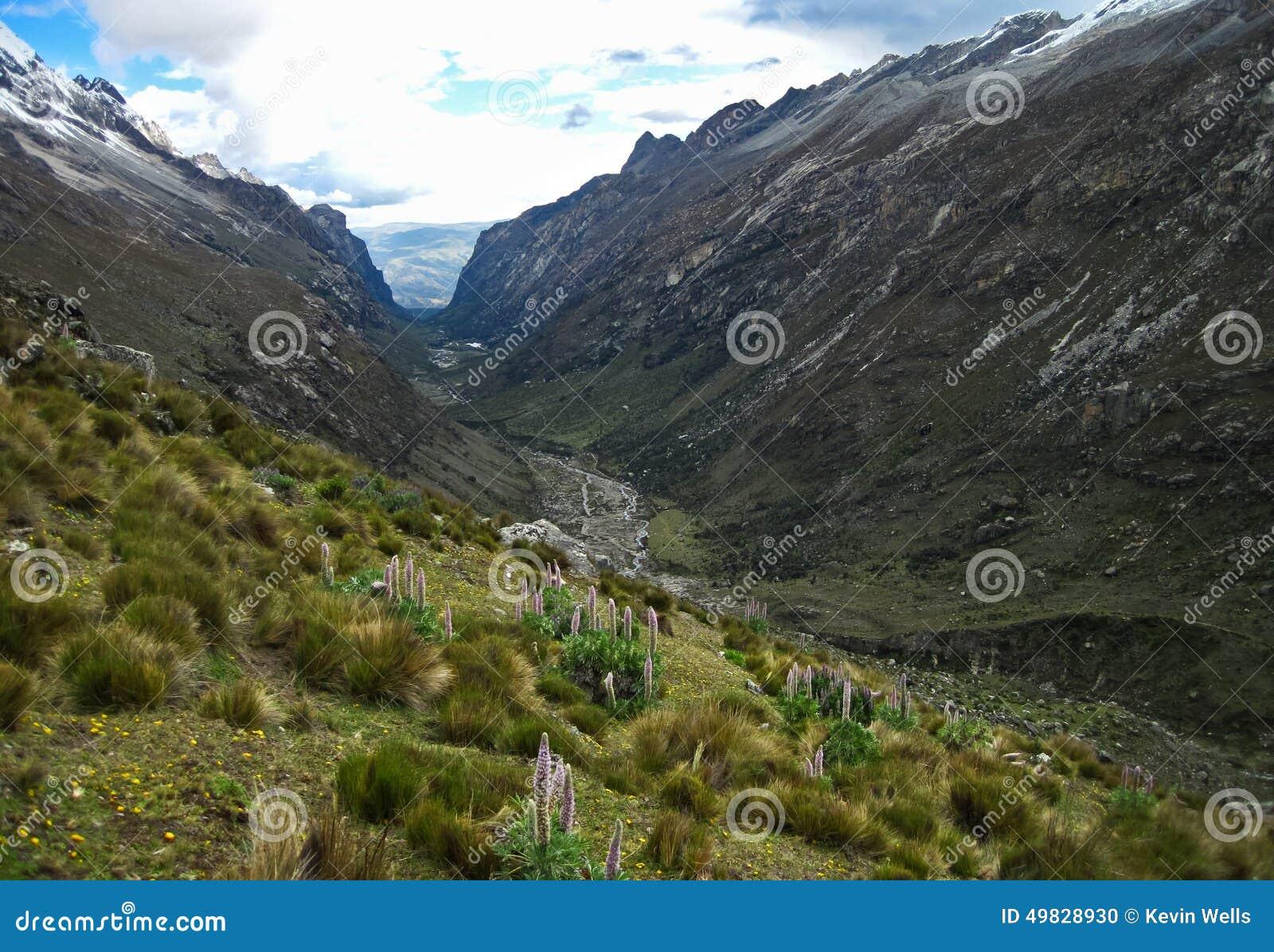 Vale de Cojup, BLANCA de Cordilheira, Peru