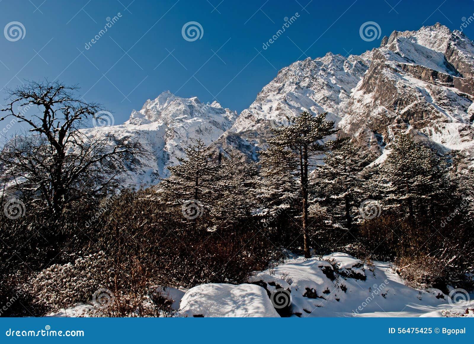 Vale de Yumthang