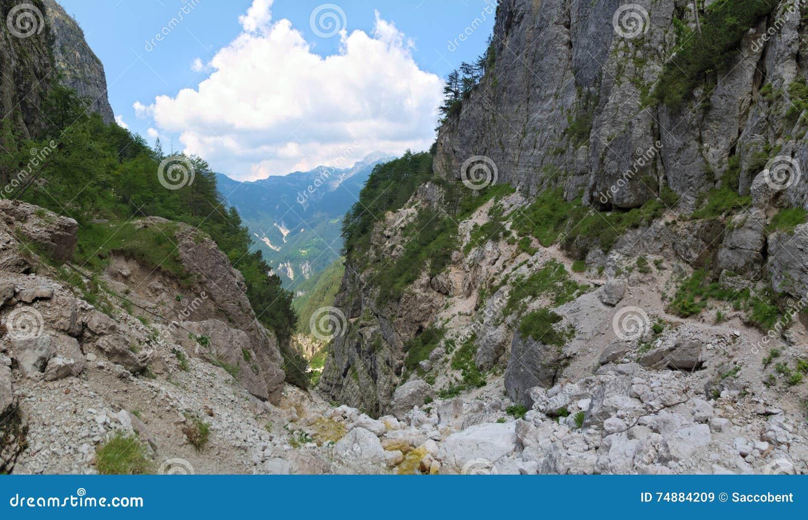 Vale selvagem da montanha em Julian Alps
