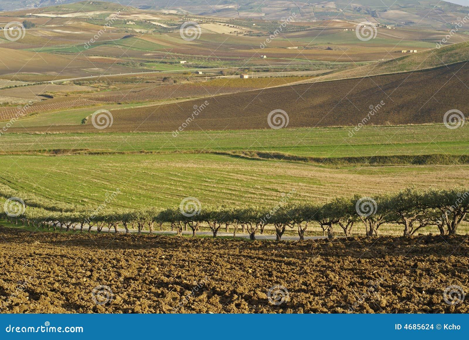 Vale siciliano
