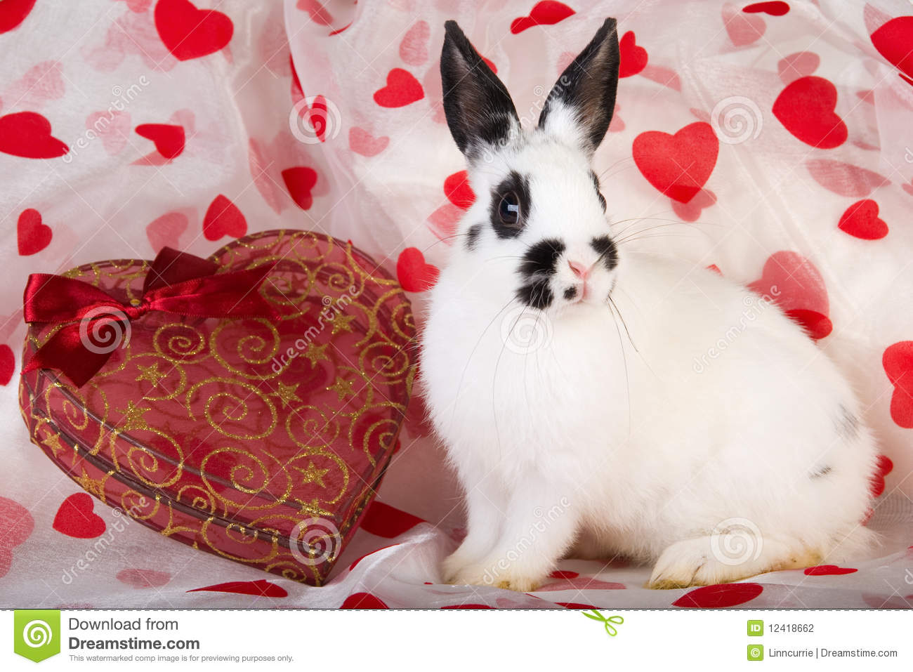 Fesselnd Valentine Bunny With Hearts