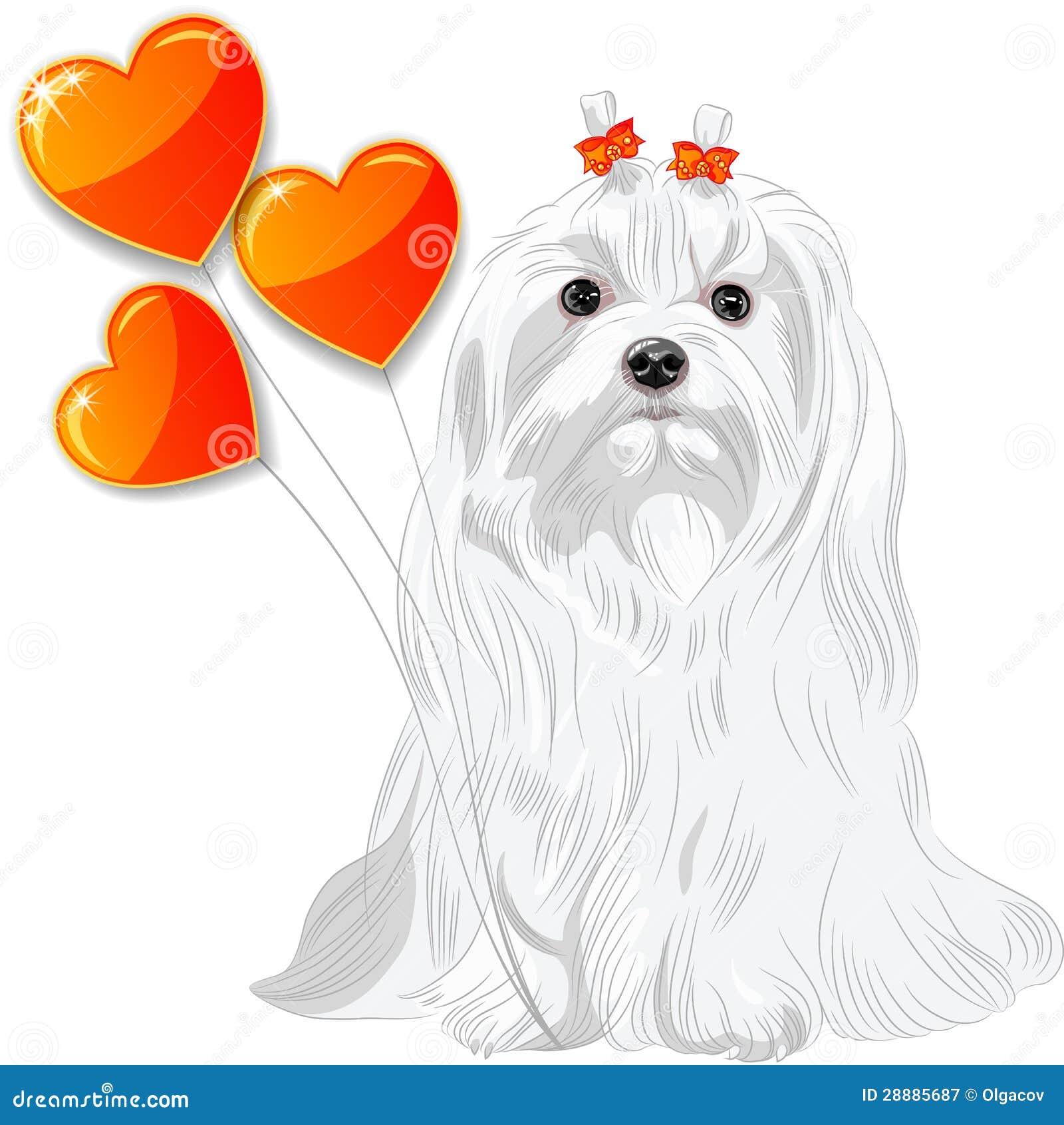 maltese dog vector illustration cartoon vector maltese dog clipart fire maltese clipart