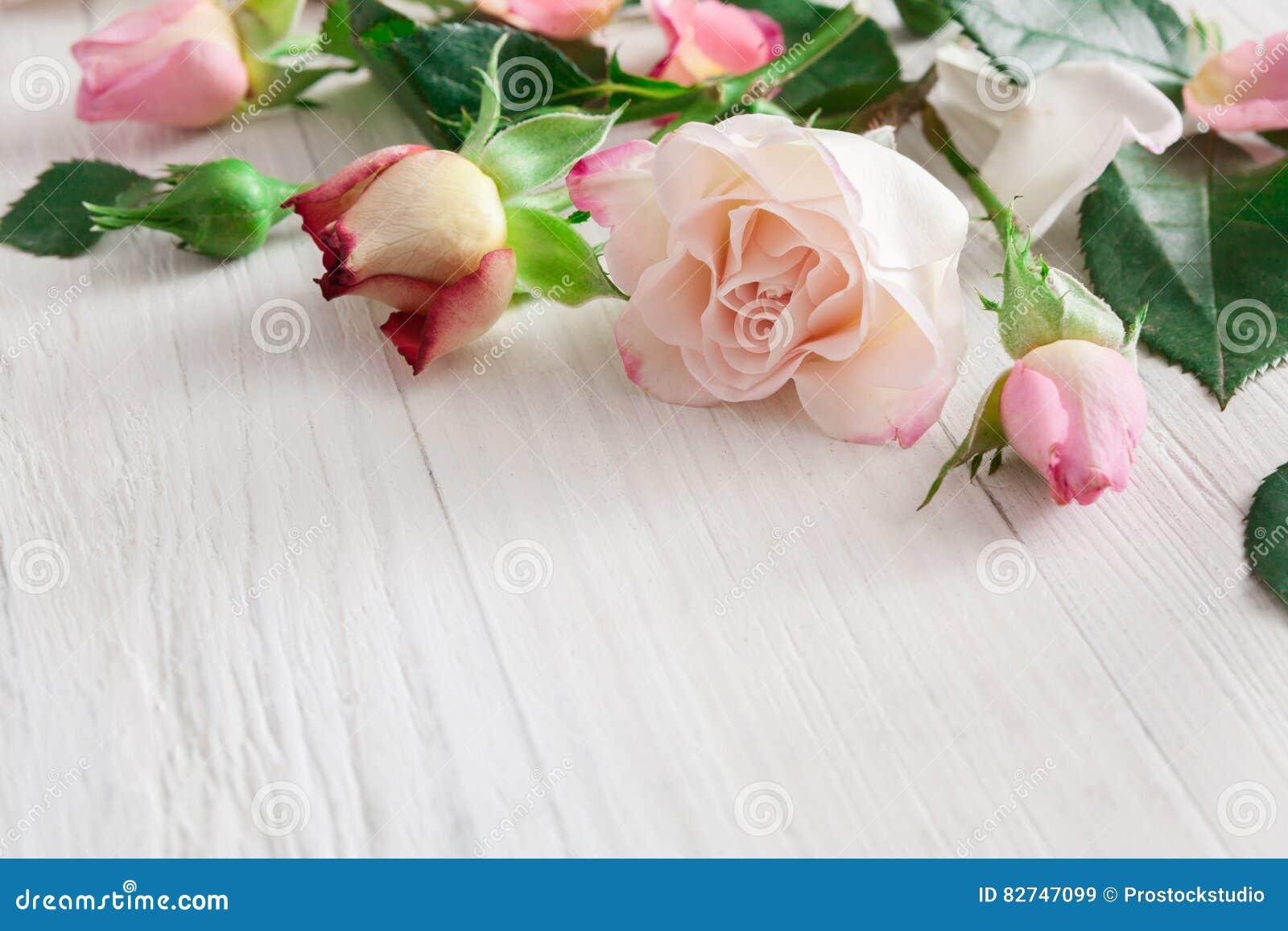 Fondo De Madera Vintage Con Flores Blancas Manzana Y: Valentine Day Background, Rose Flowers On White Wood Stock