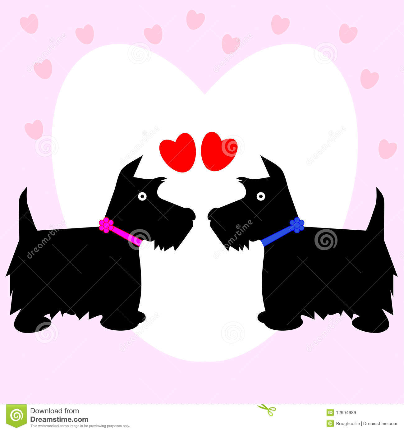 Two scottie dogs, male and female in love with heart background, ideal ...