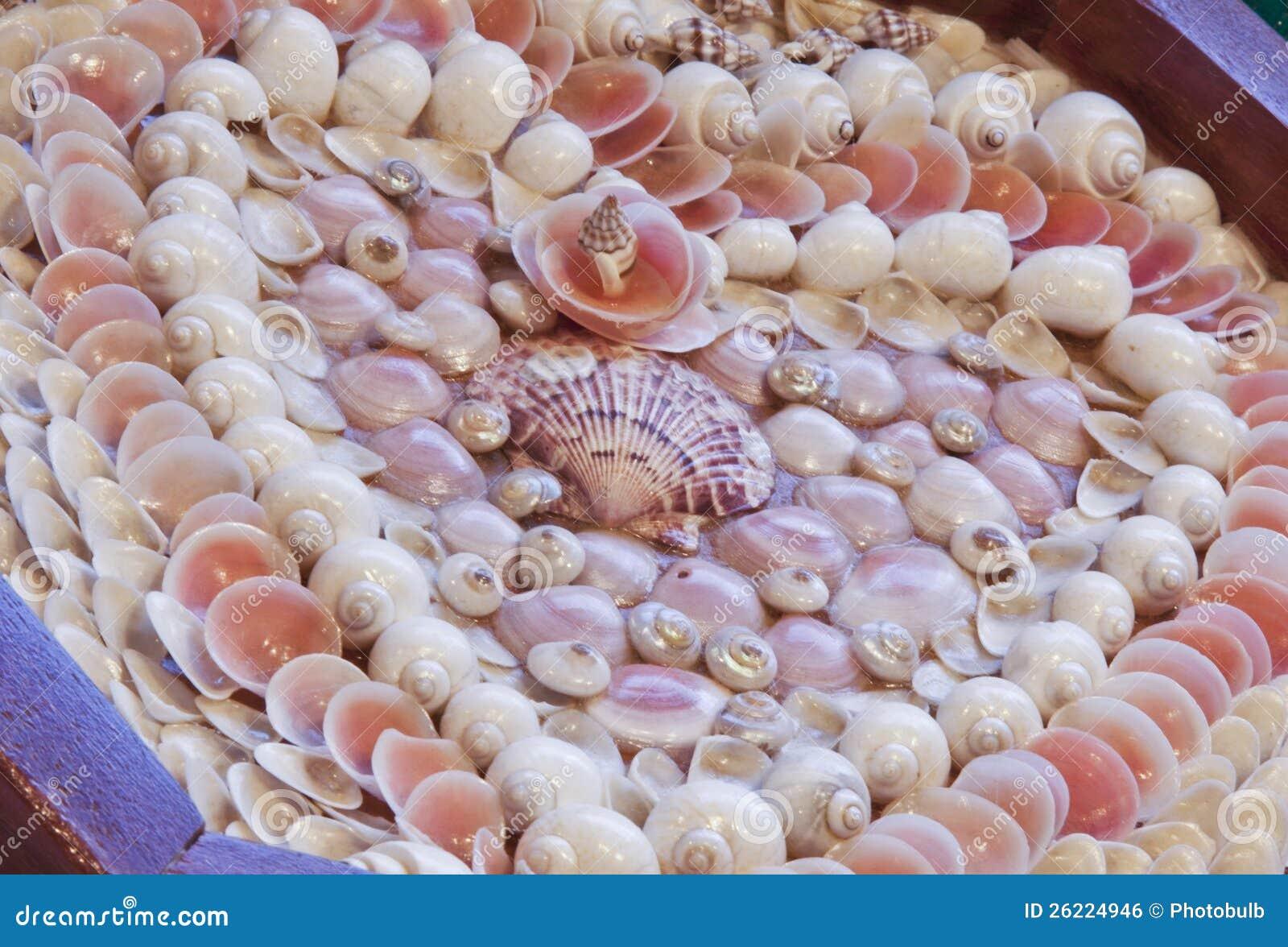 Valentine du marin des Seashells