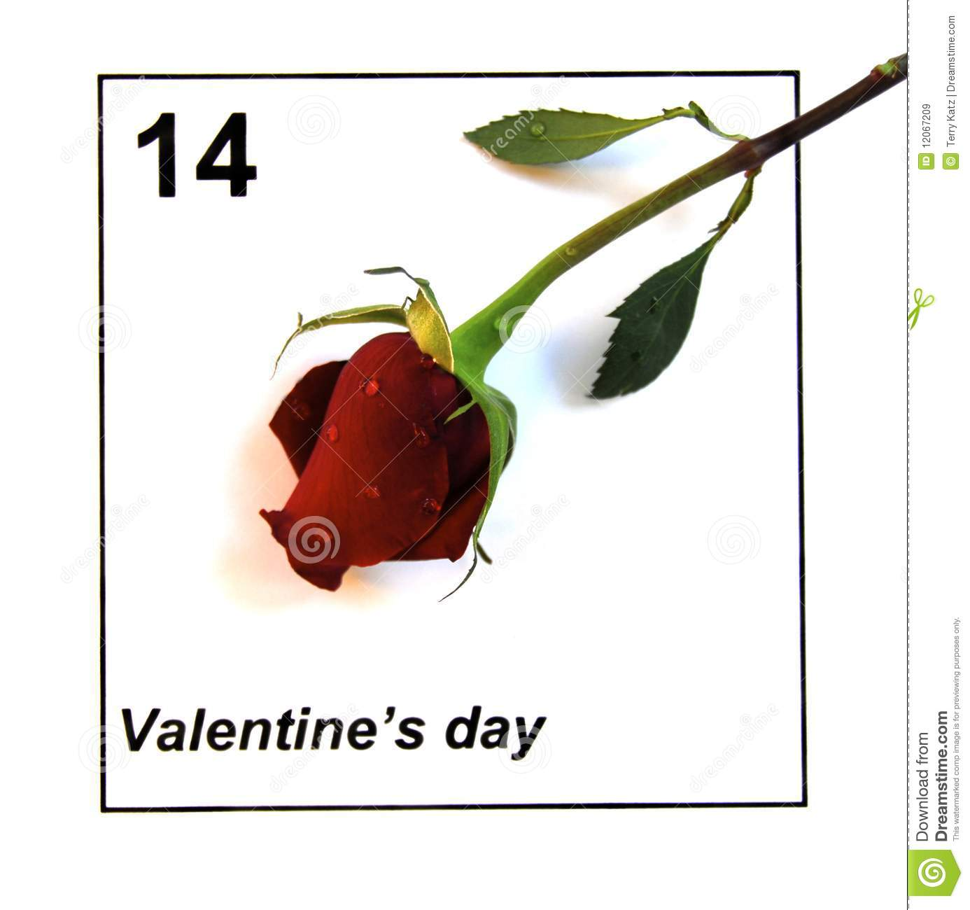 Calendar Rose Day : Valentines day calendar with single rose royalty free