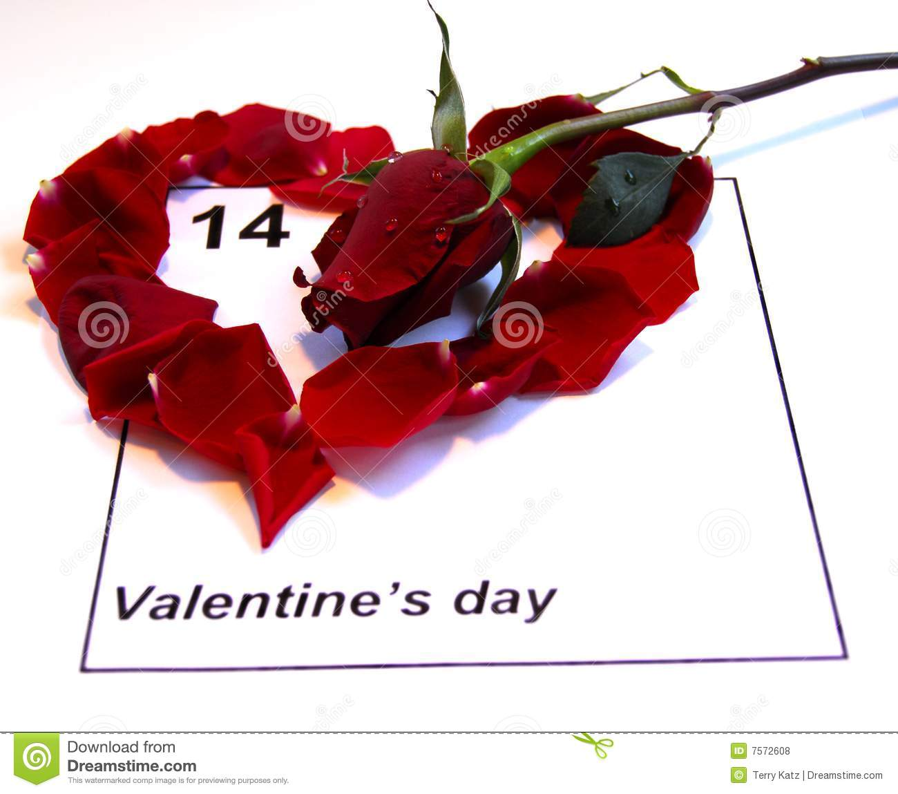 valentines day calendar with single rose stock photo - image: 7572608, Ideas