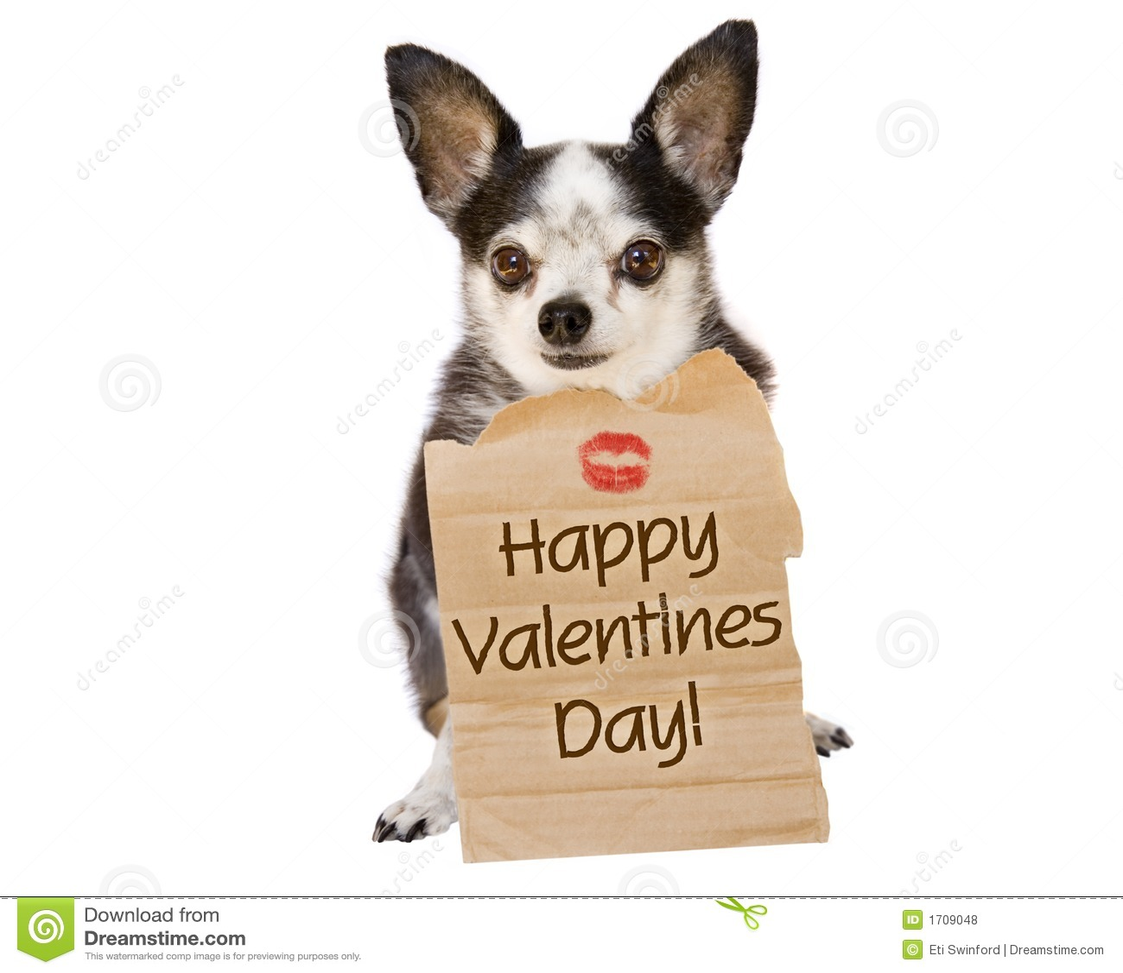 Valentines day dog kiss