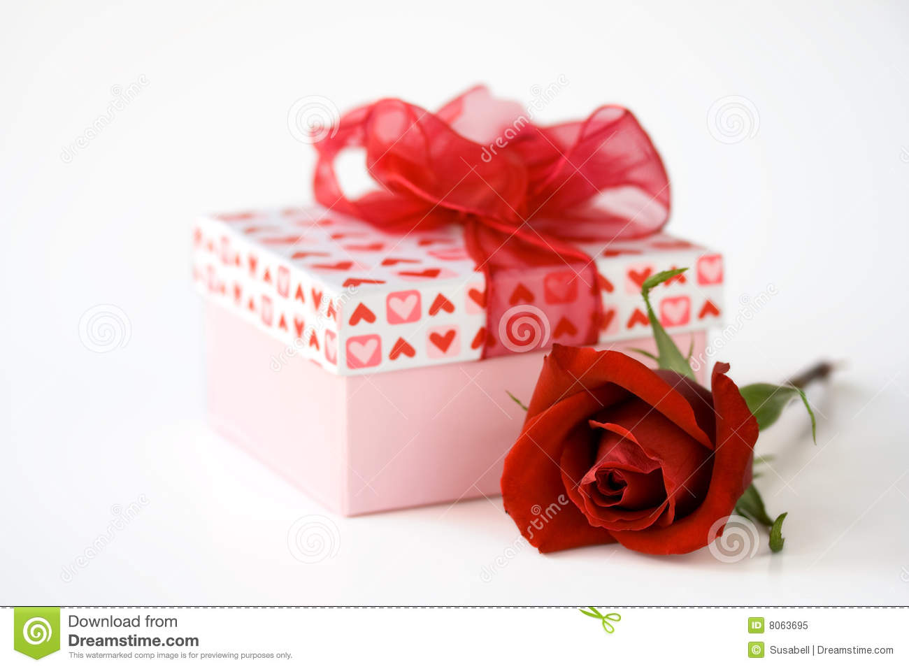 valentines day gift and flower stock image image 8063695